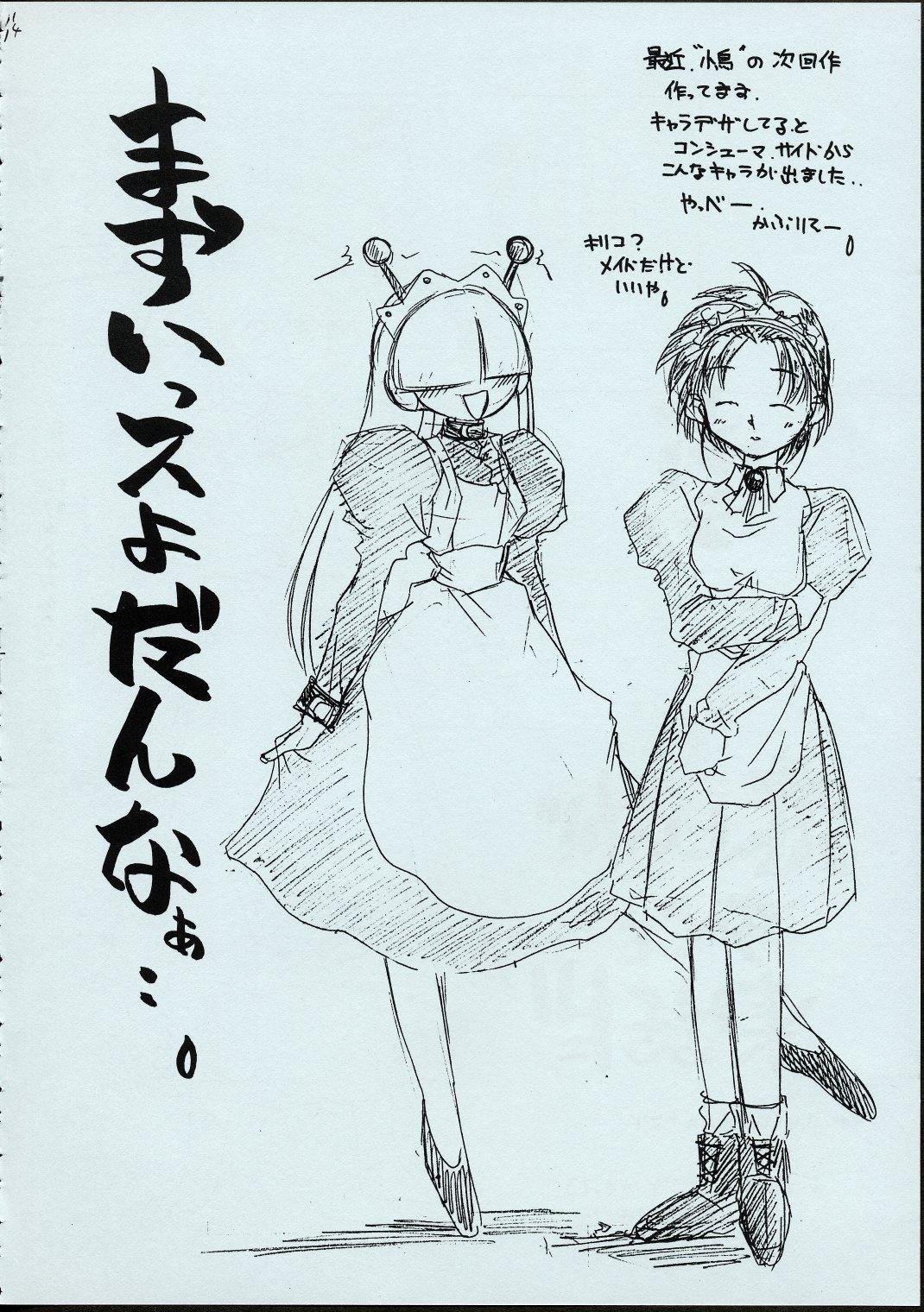 Maid-san kihonkei 12