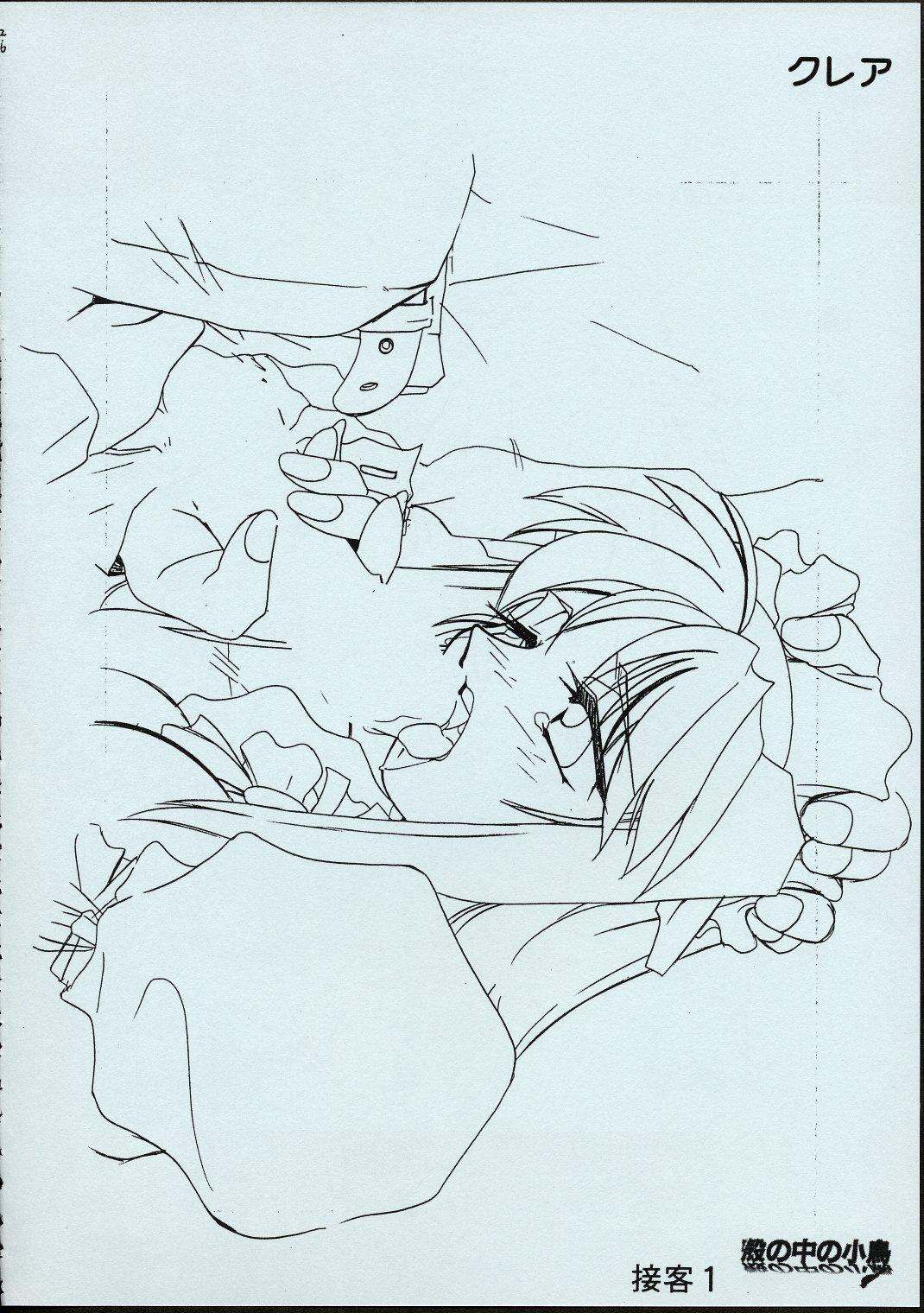Maid-san kihonkei 24