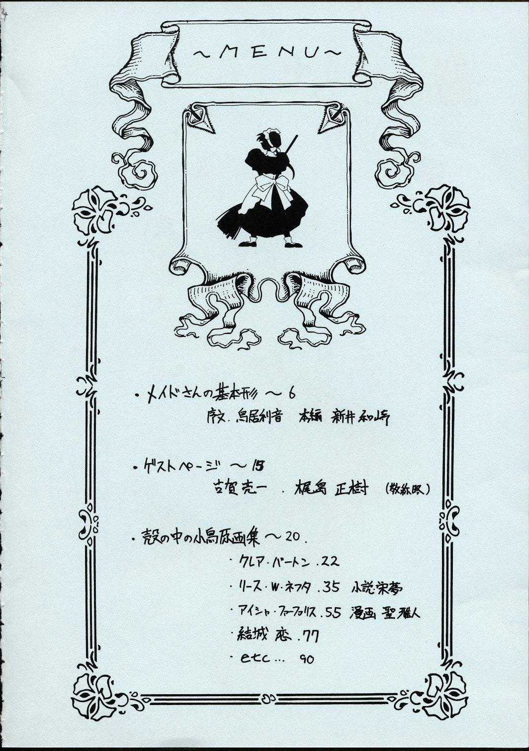Maid-san kihonkei 2