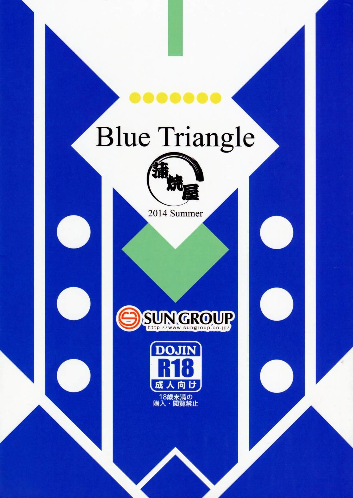 Blue Triangle 13