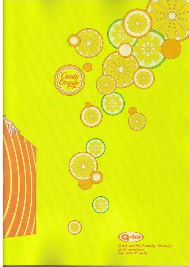 (C65) [Q-bit (Q-10)] Q-bit Vol. 06 - Candy Orange (One Piece) 27
