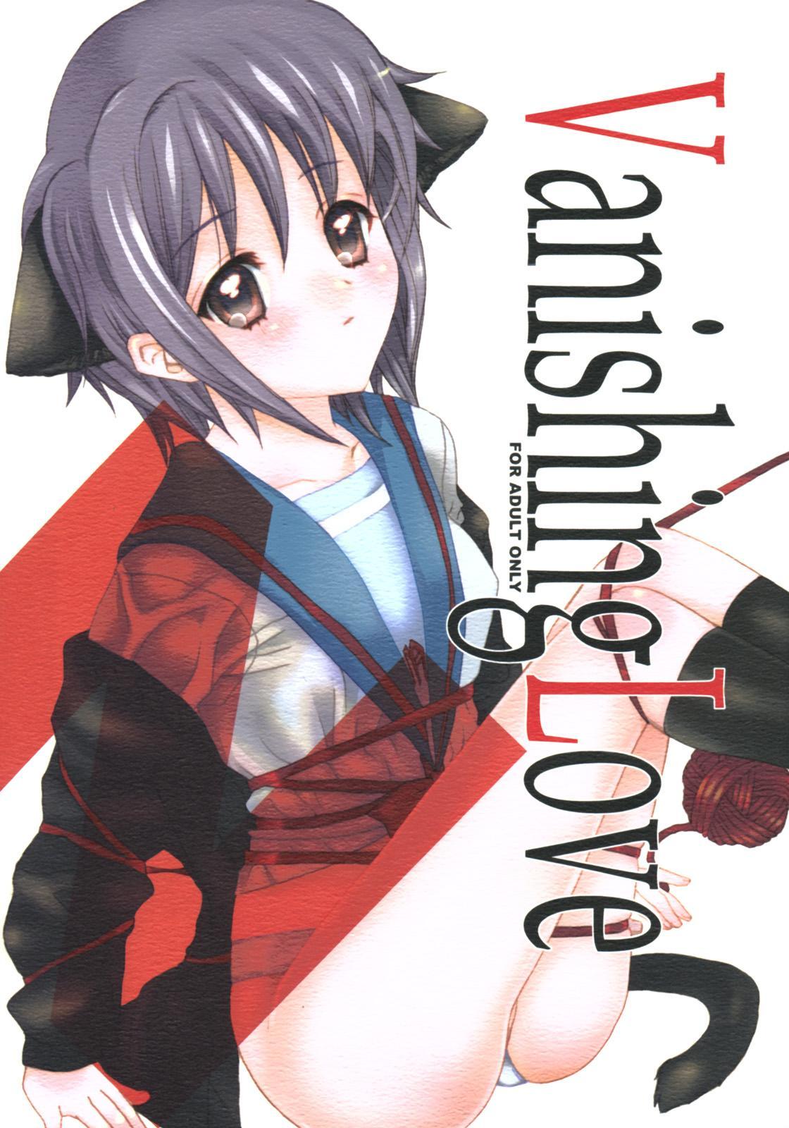 Vanishing Love 0