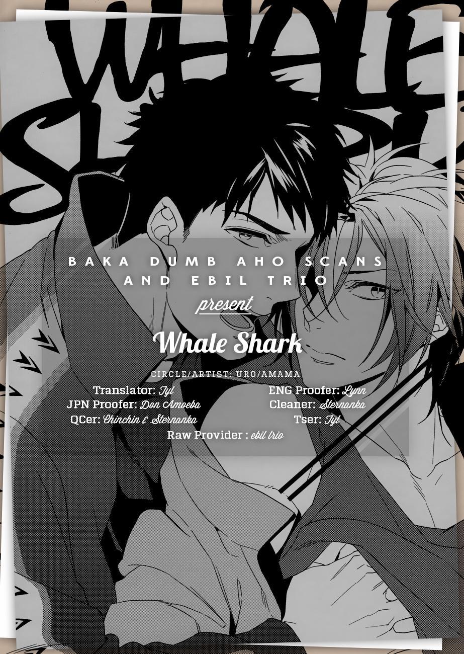 Whale Shark 14