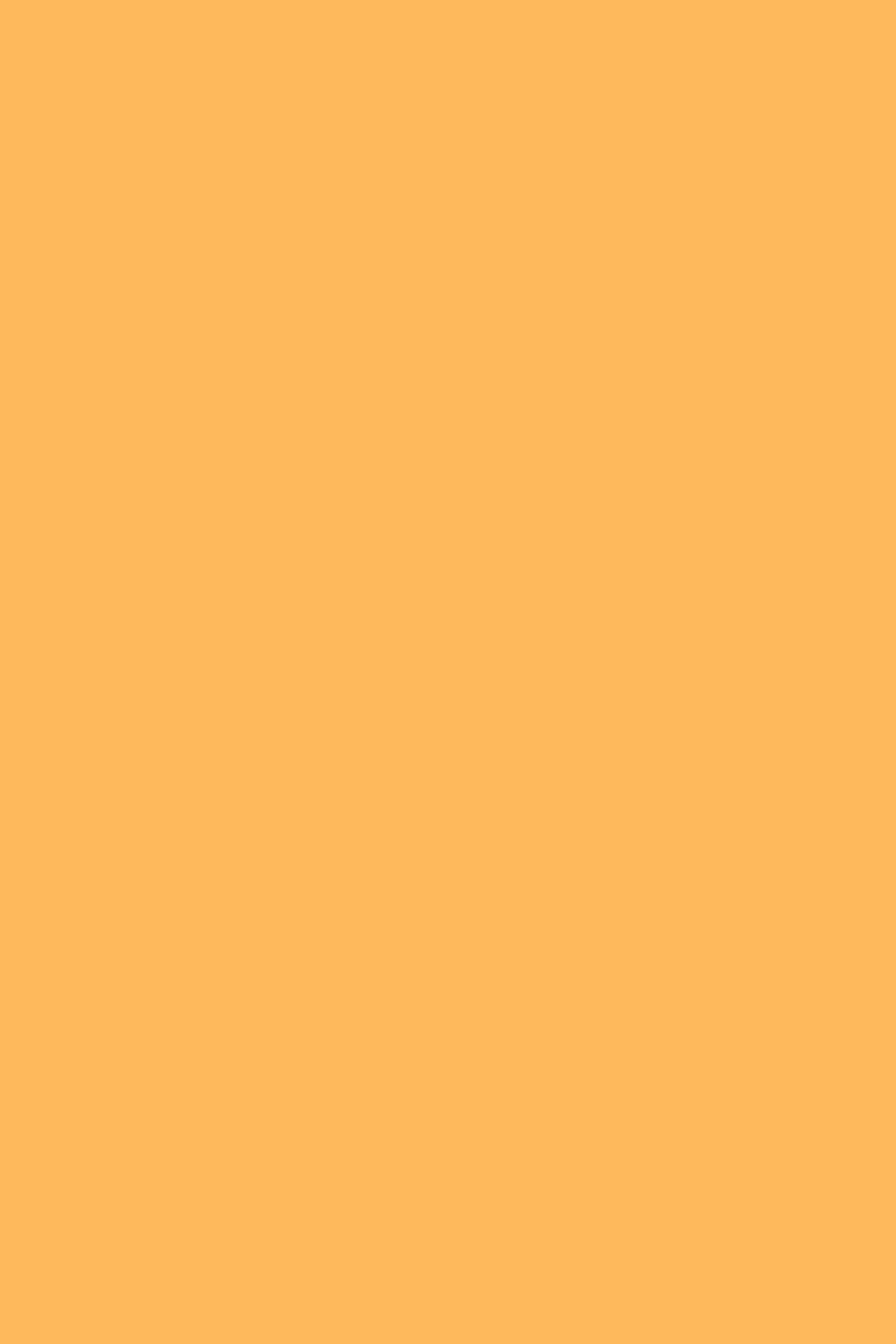 Rukia Kuchiki Minimum Maniax File 1