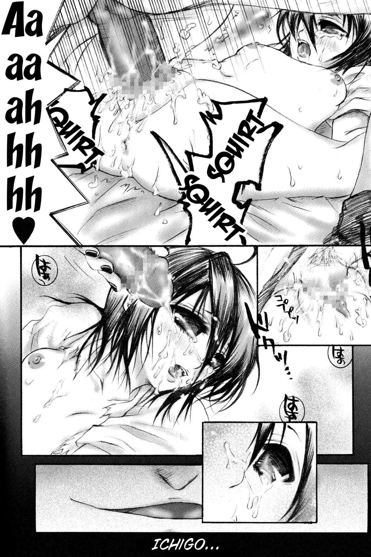 Rukia Kuchiki Minimum Maniax File 47