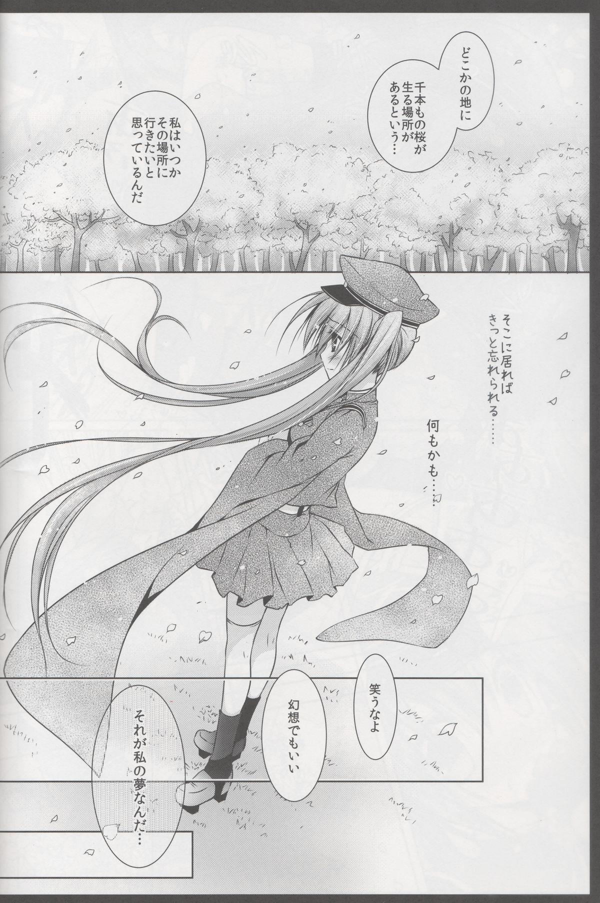 Sakura・Sakura 14