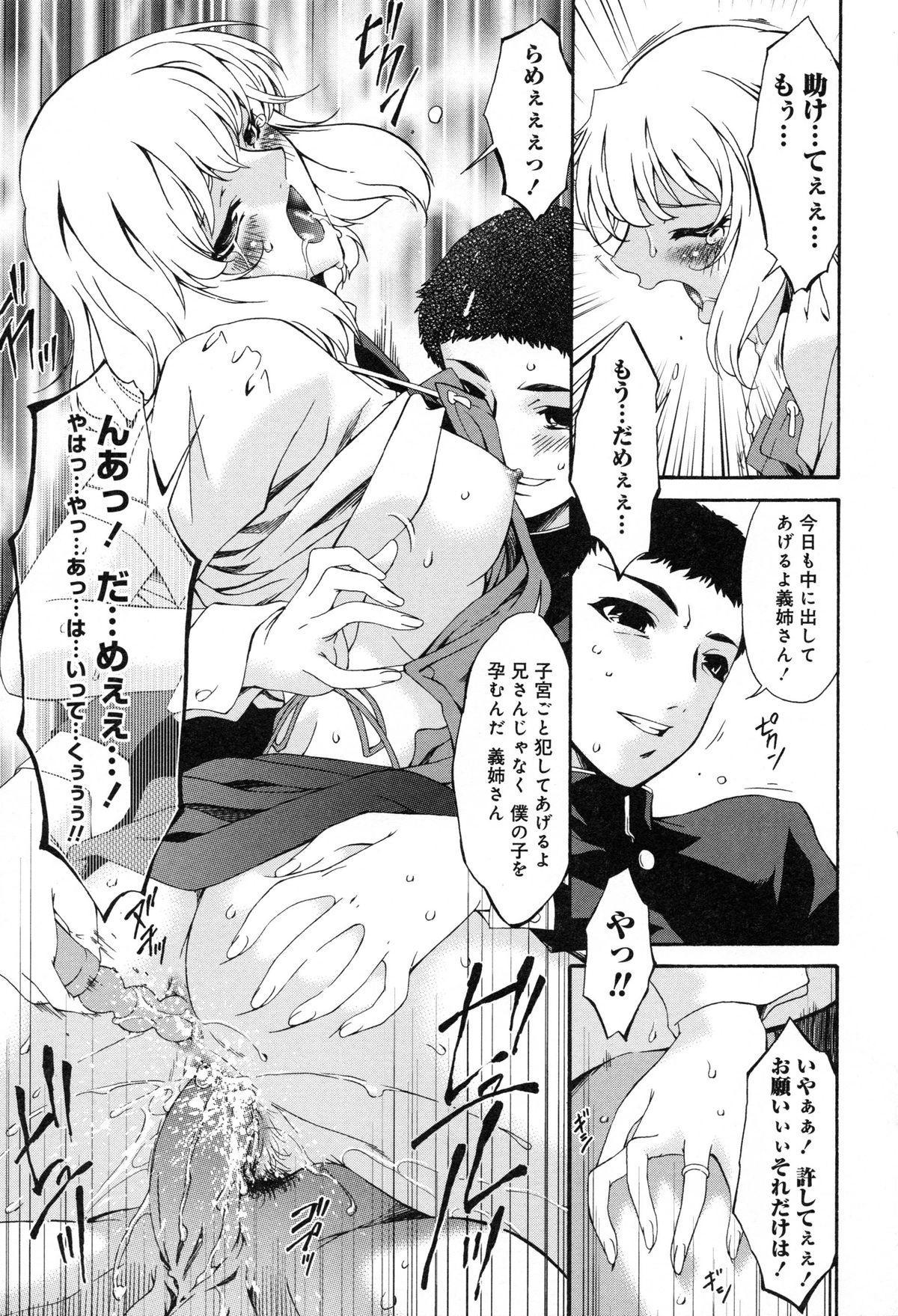 Shinshoku no Toki 27