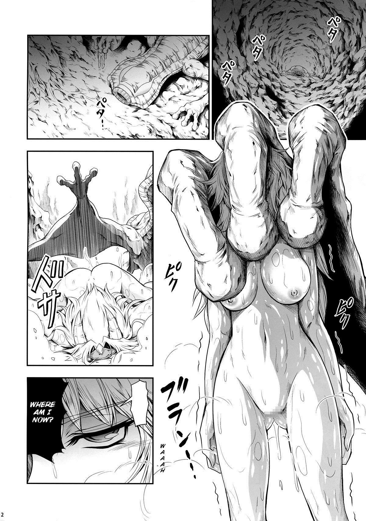 Solo Hunter no Seitai 4 The third part 11