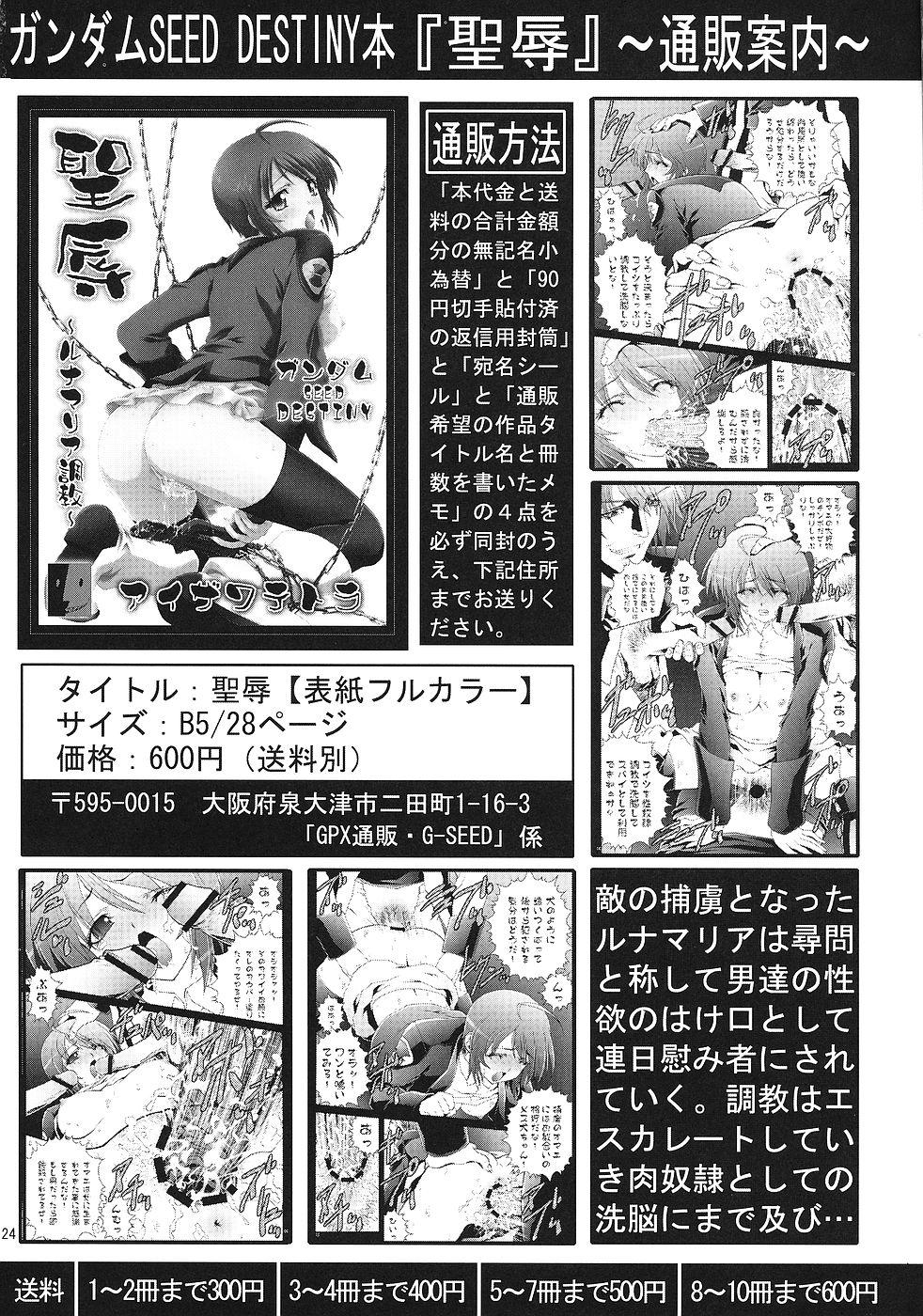 Ichigo Gari 22