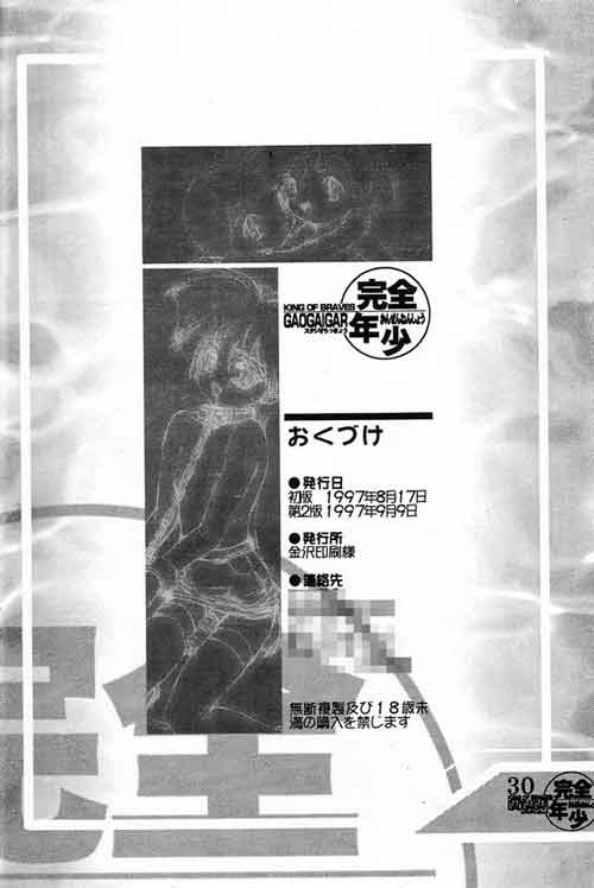 Kanzen Nenshou King of Braves GaoGaiGar 28