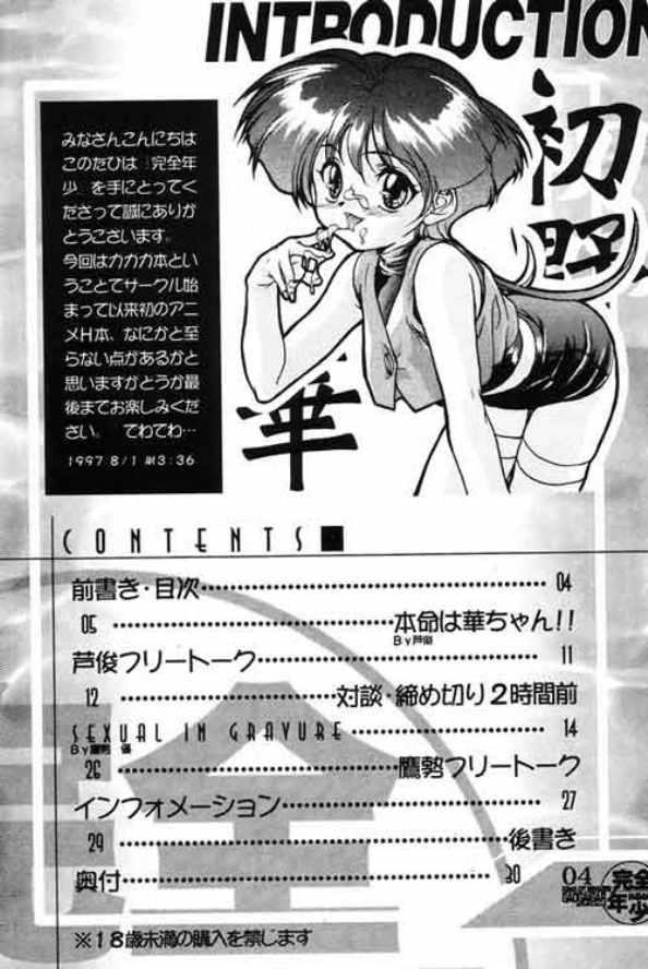 Kanzen Nenshou King of Braves GaoGaiGar 2