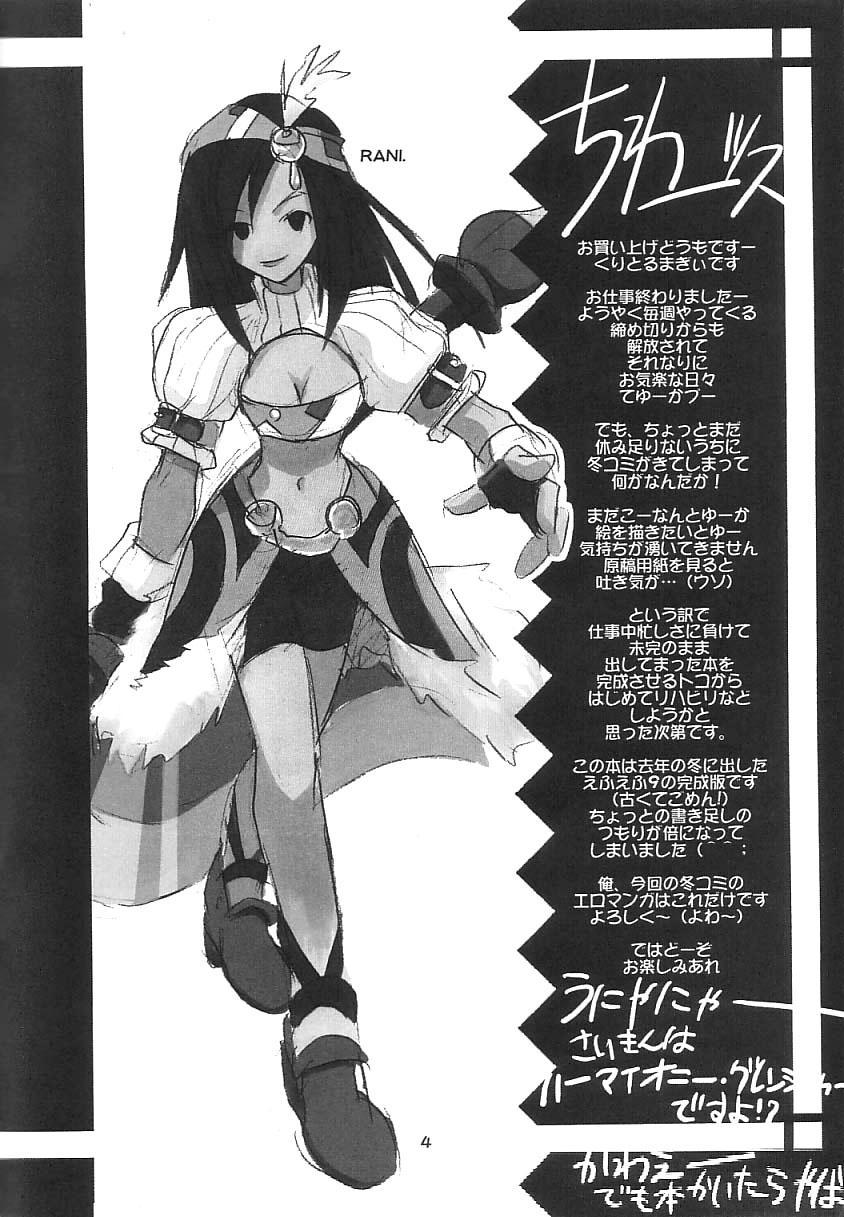 FF Ninenya Kaisei Han 2