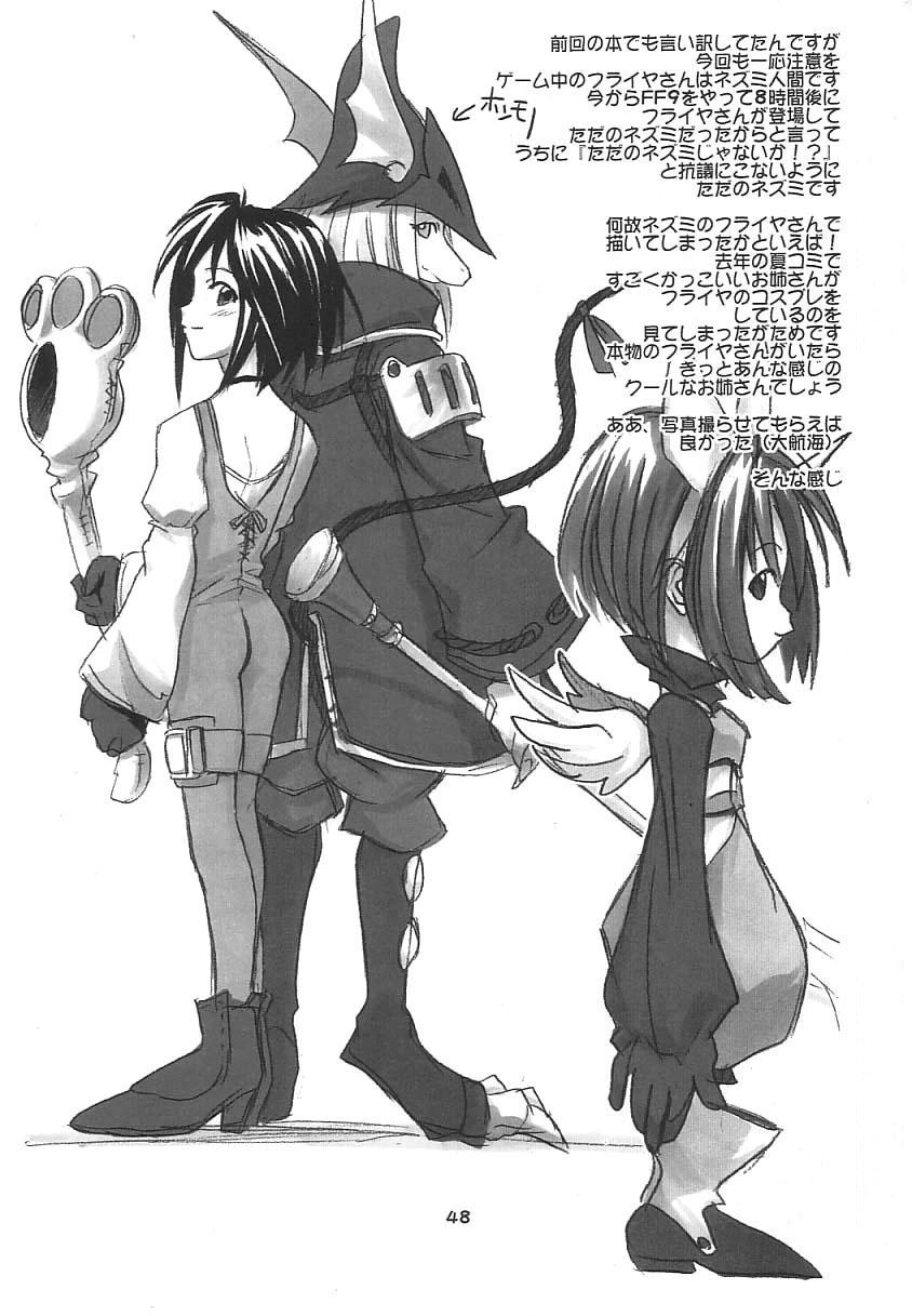 FF Ninenya Kaisei Han 46