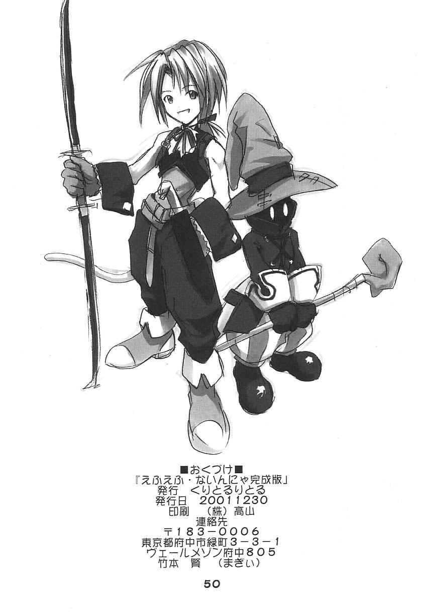 FF Ninenya Kaisei Han 48