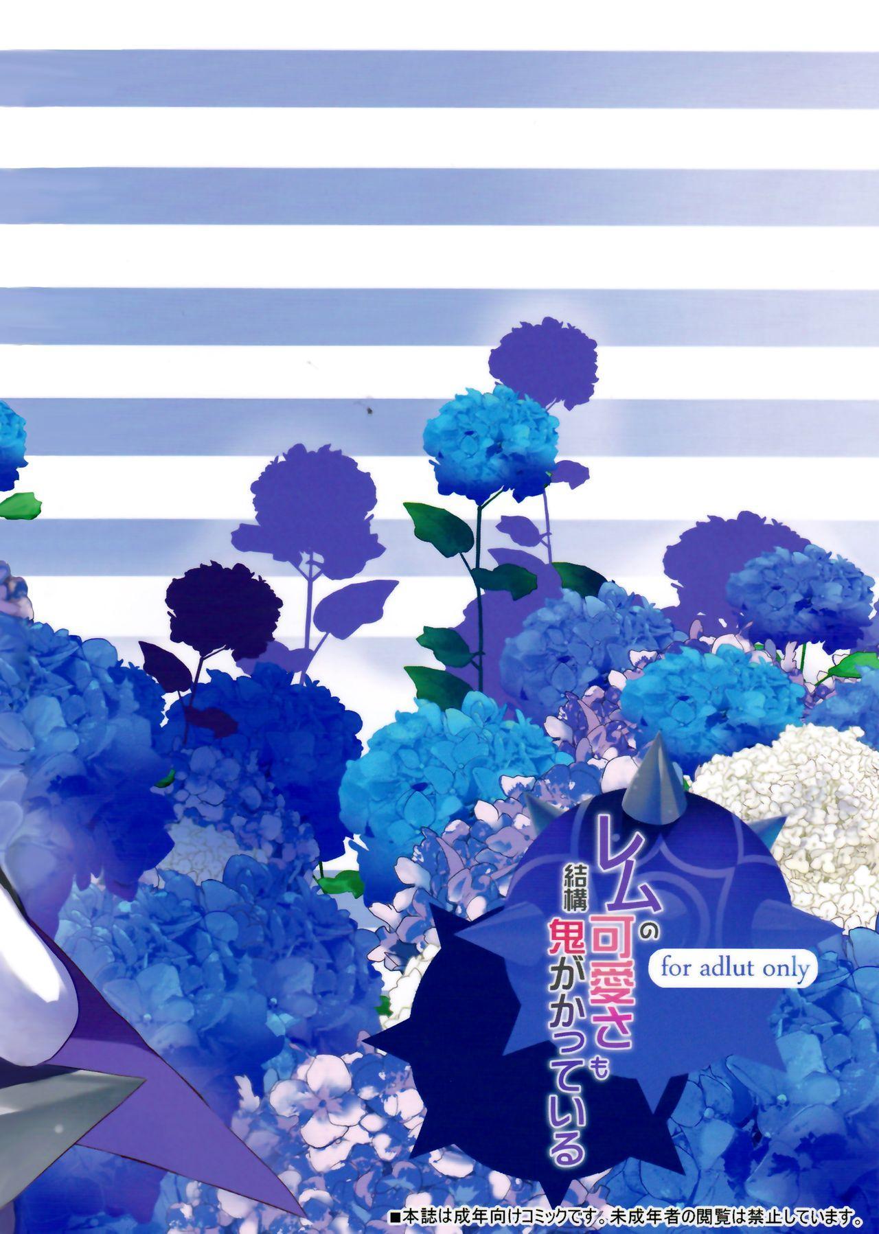 Rem no Kawaisa mo Onigakatteiru 16