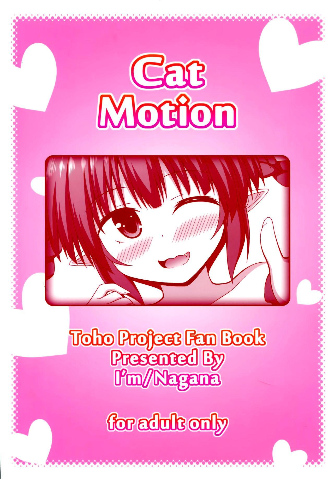 Cat Motion 23