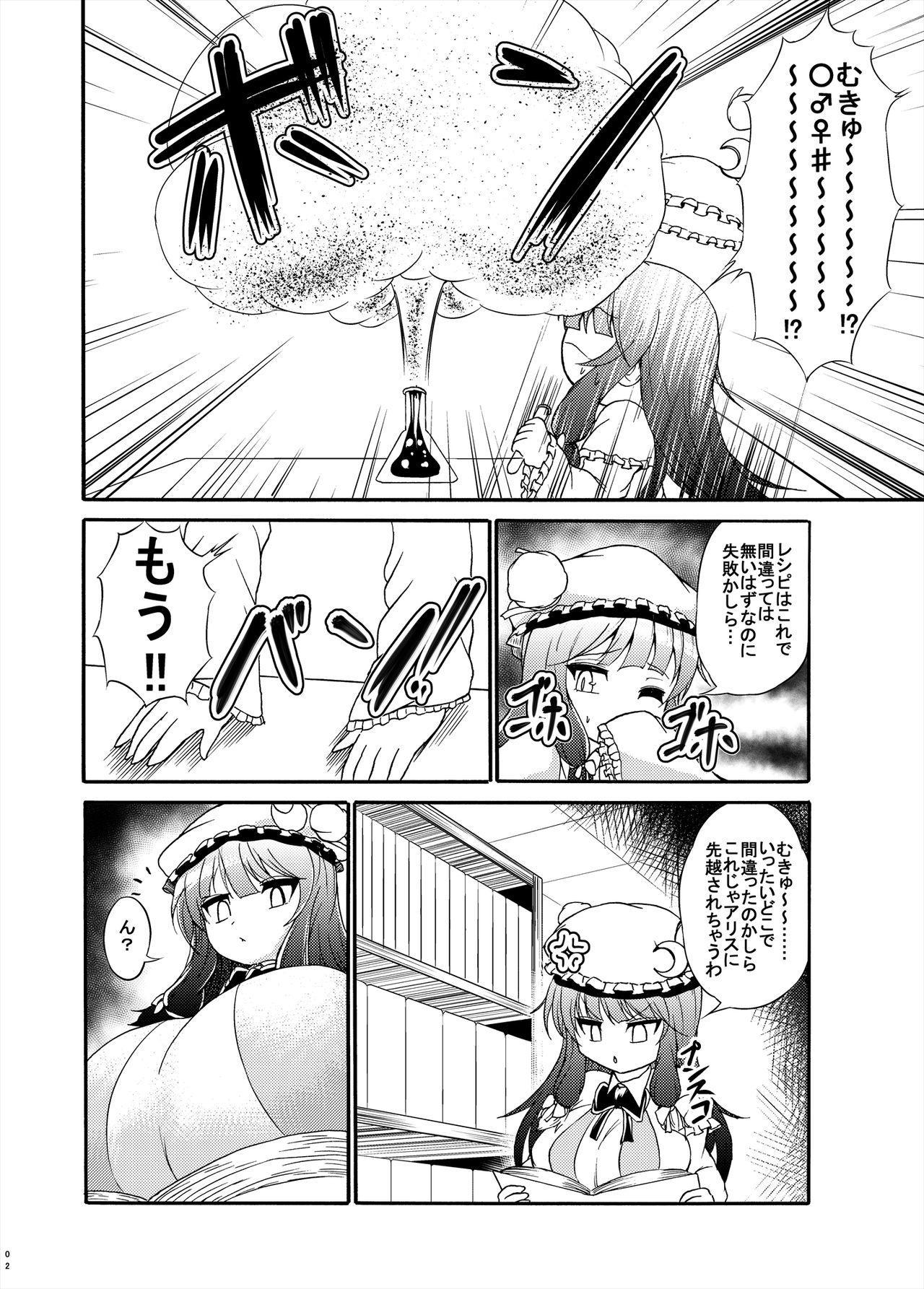 Patchouli-sama ga Futotte Sakunyuu Sareru Hon 1