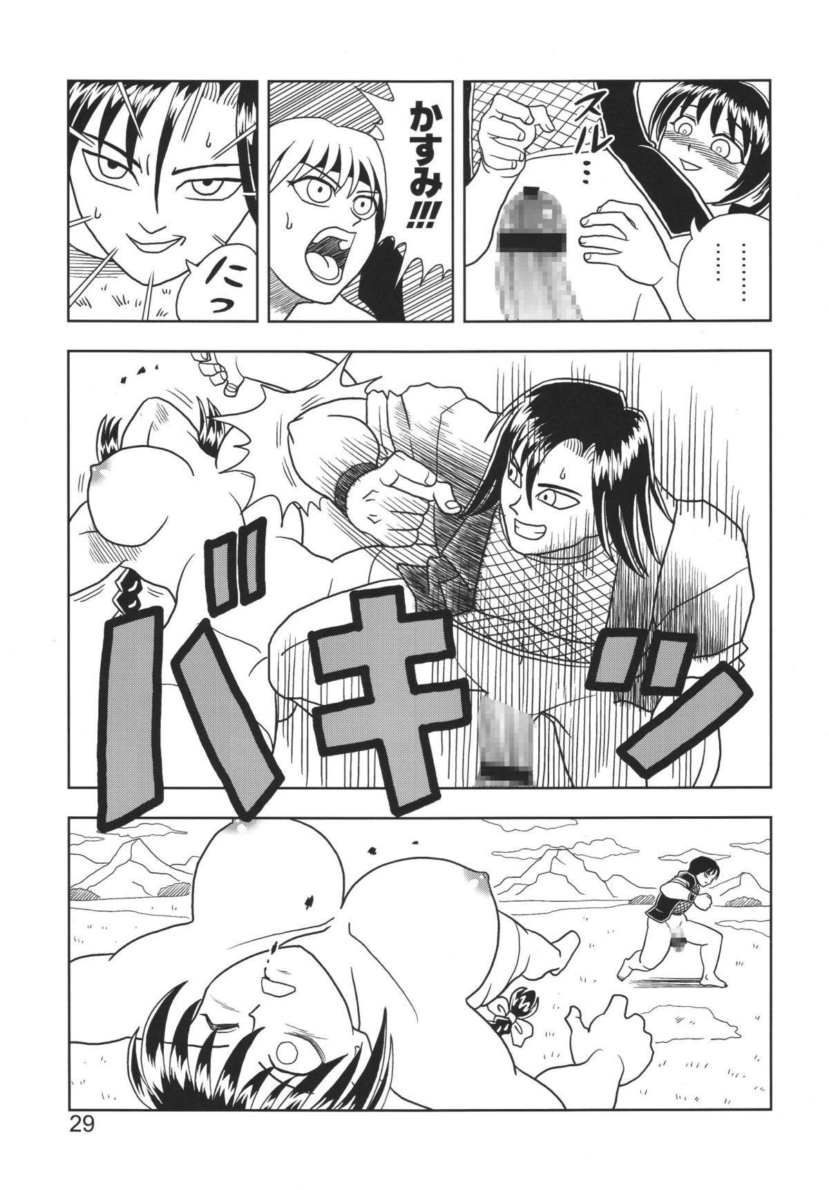 Kasumi or Ayane 28