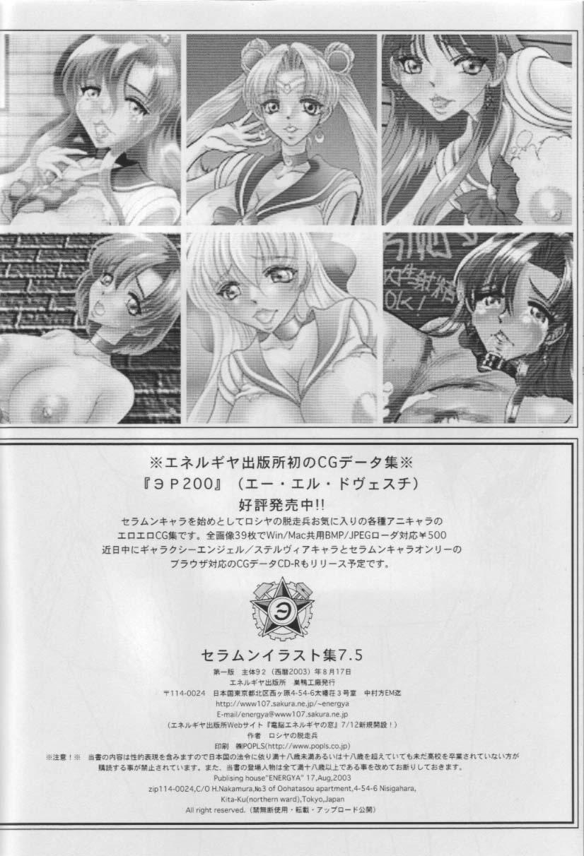 Sailor Moon Illustration Collection 7.5 24