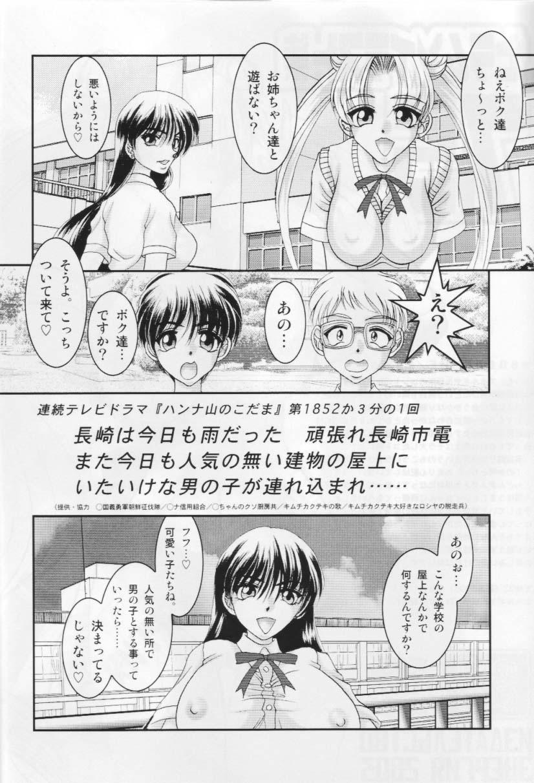 Sailor Moon Illustration Collection 7.5 2