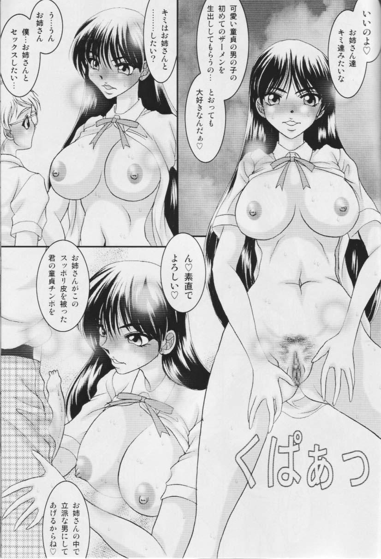Sailor Moon Illustration Collection 7.5 7