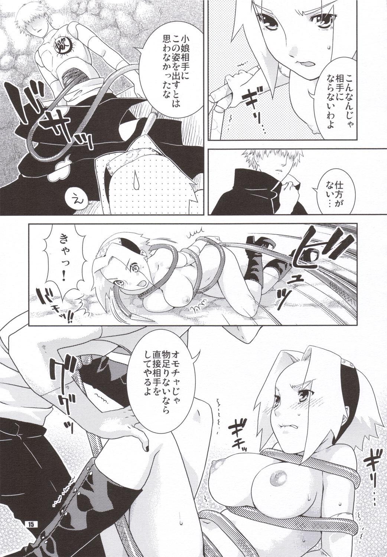 Shidare Zakura 13