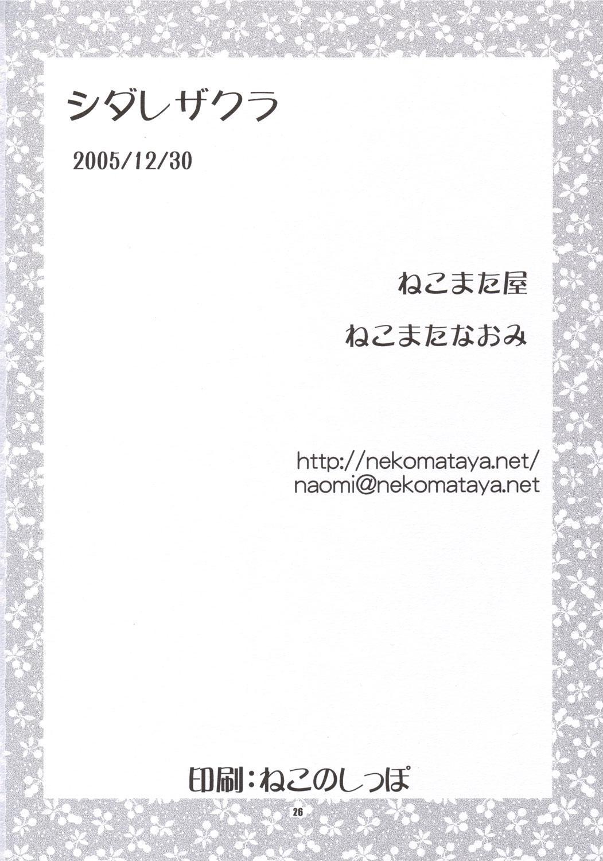 Shidare Zakura 24