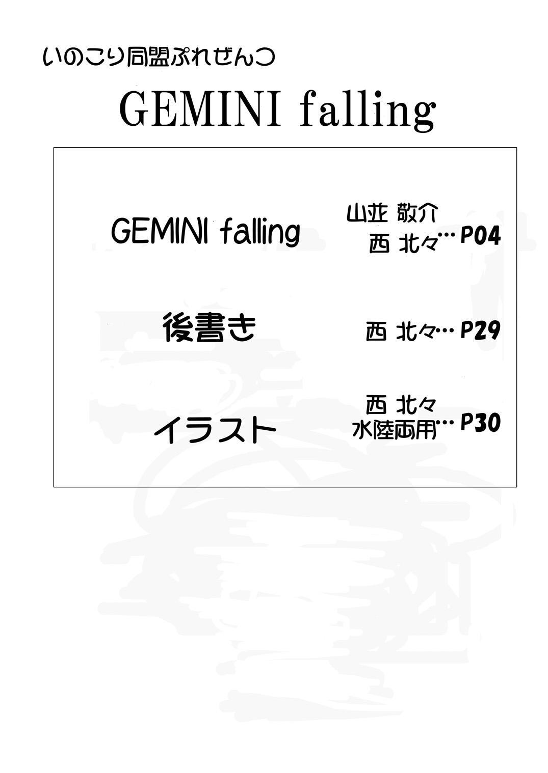 GEMINI falling 2