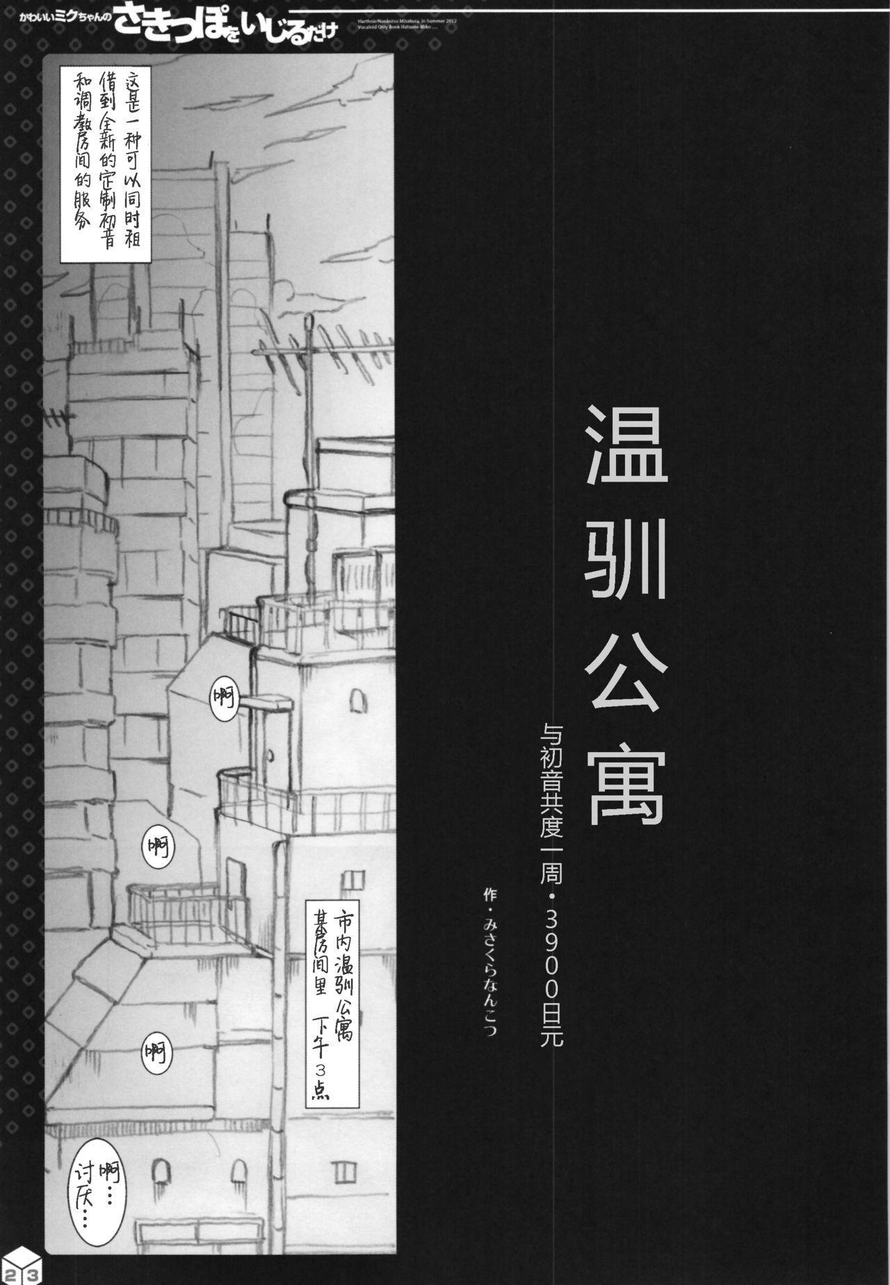 Kawaii Miku-chan no Sakippo o Ijiru dake   只是来欺负初音可爱的尖尖而已 7