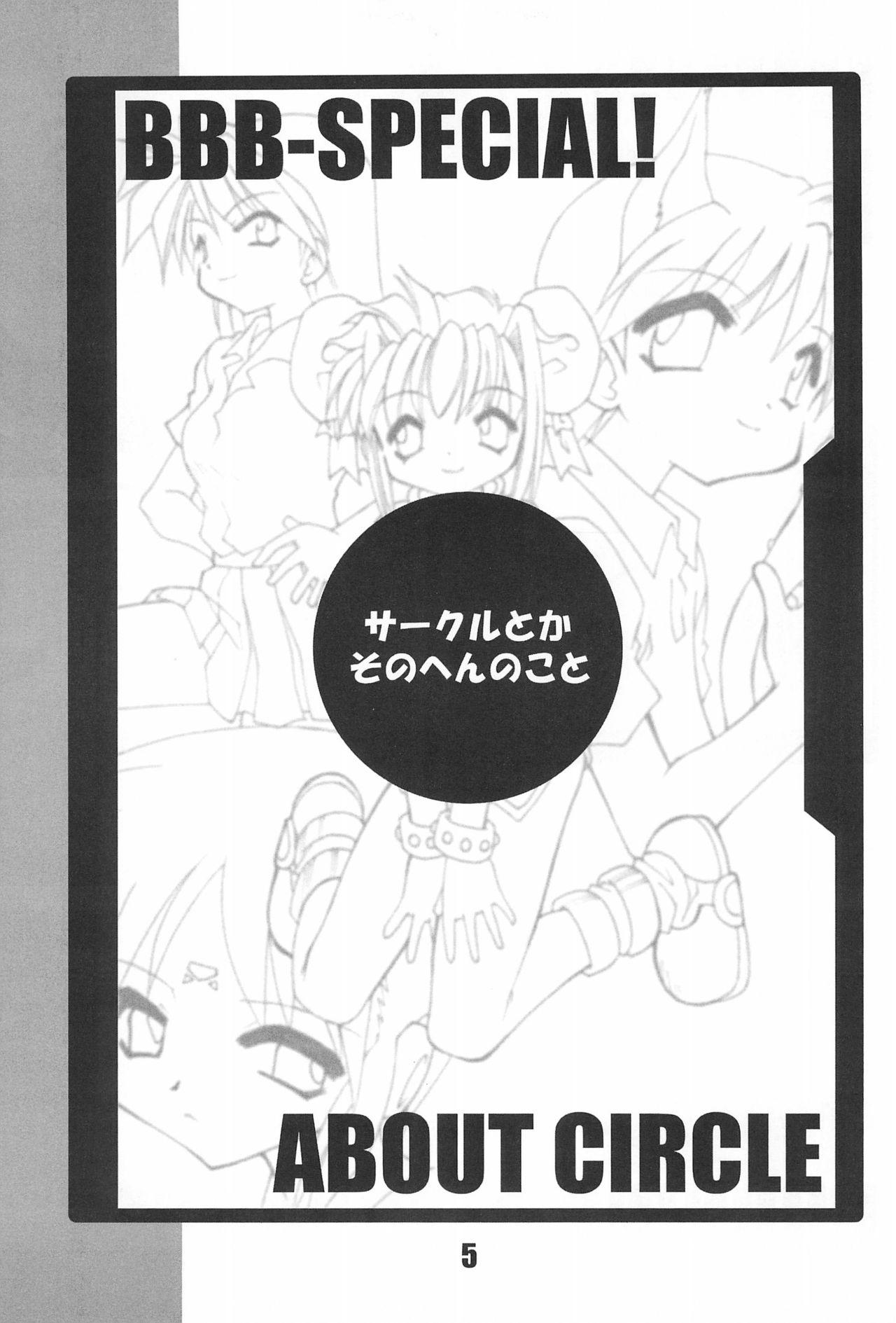 BBB OFFICIAL GUIDE BOOK 4