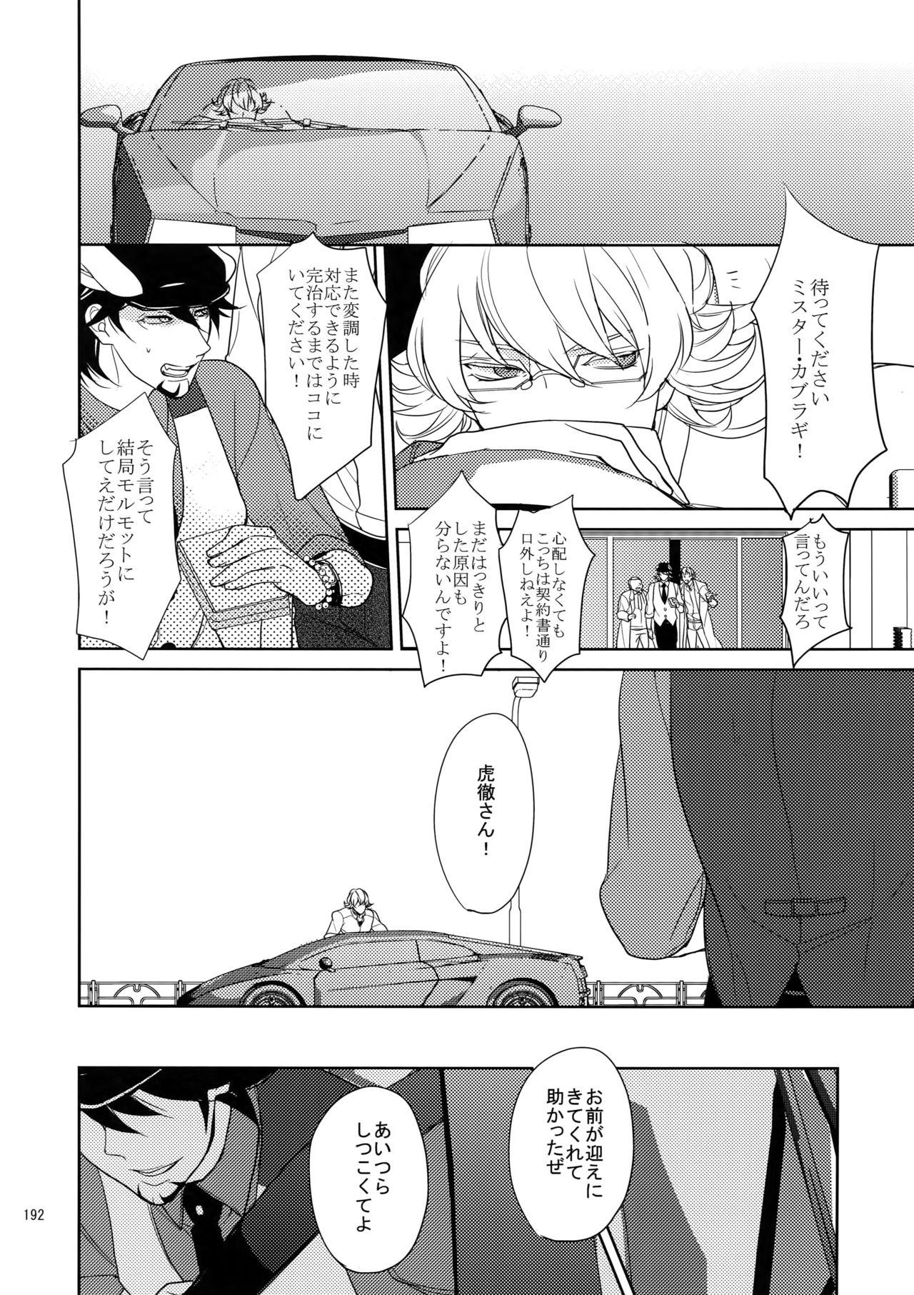 BOROZS Usagi Tora Sairoku 190