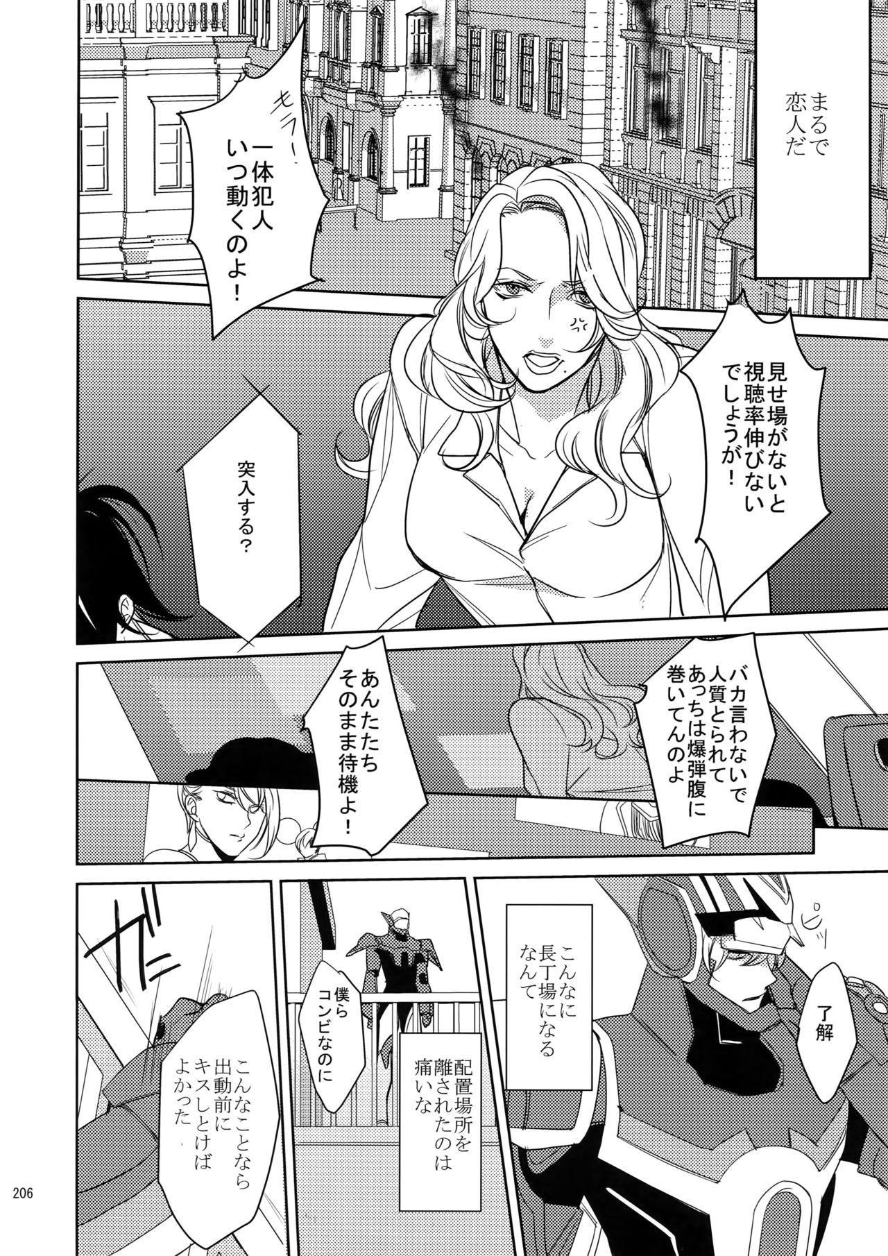 BOROZS Usagi Tora Sairoku 204
