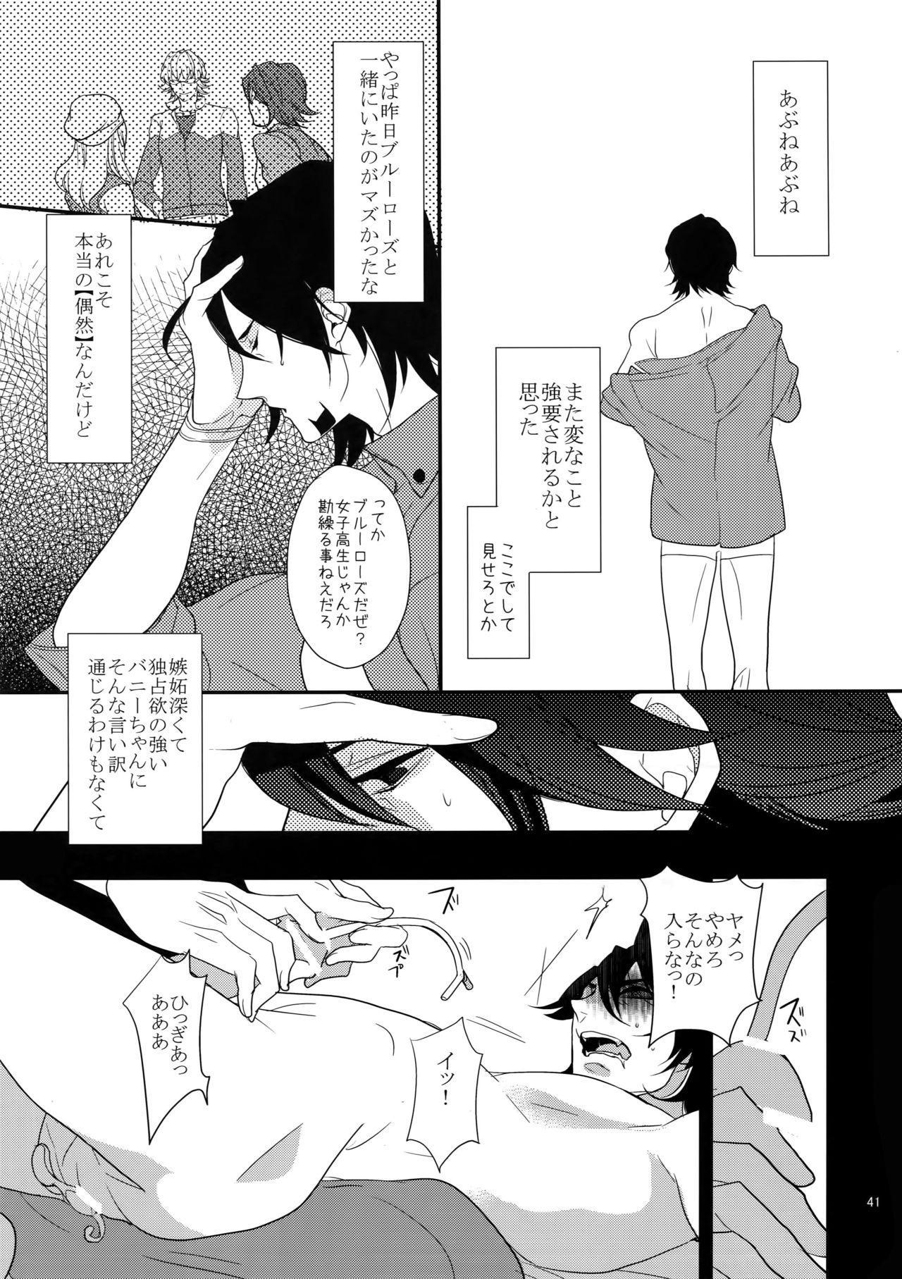 BOROZS Usagi Tora Sairoku 39