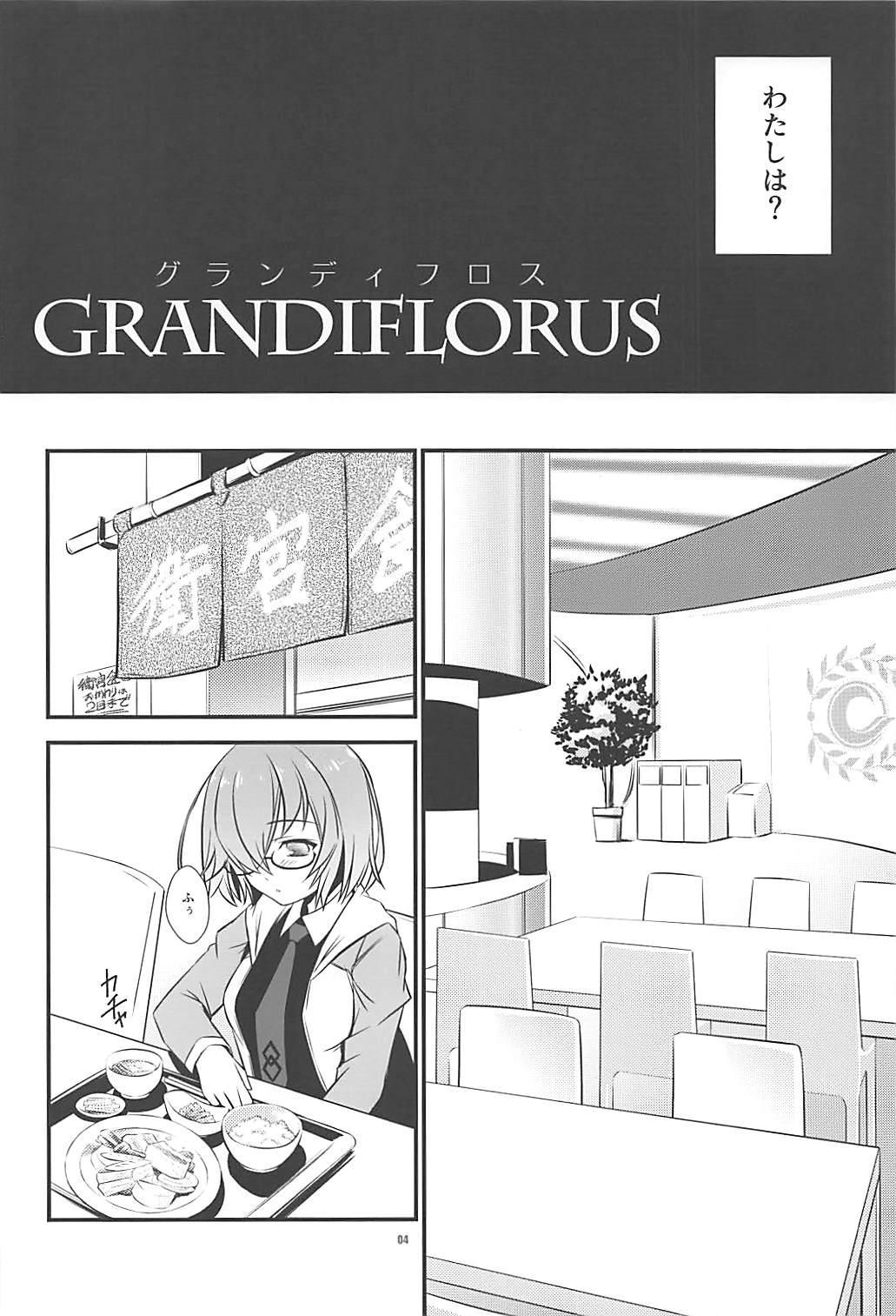 GRANDIFLORUS 2
