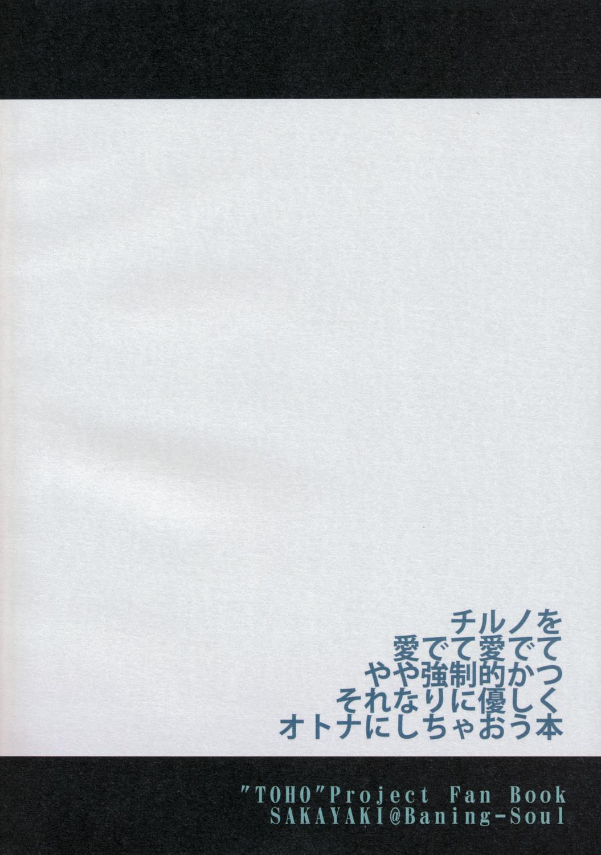 Touhou Shunga Hon - Hyousei Sounan 27