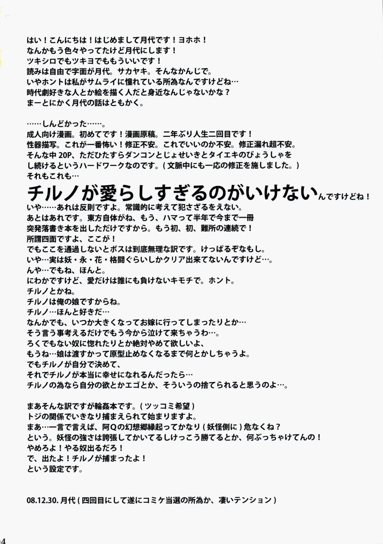 Touhou Shunga Hon - Hyousei Sounan 3