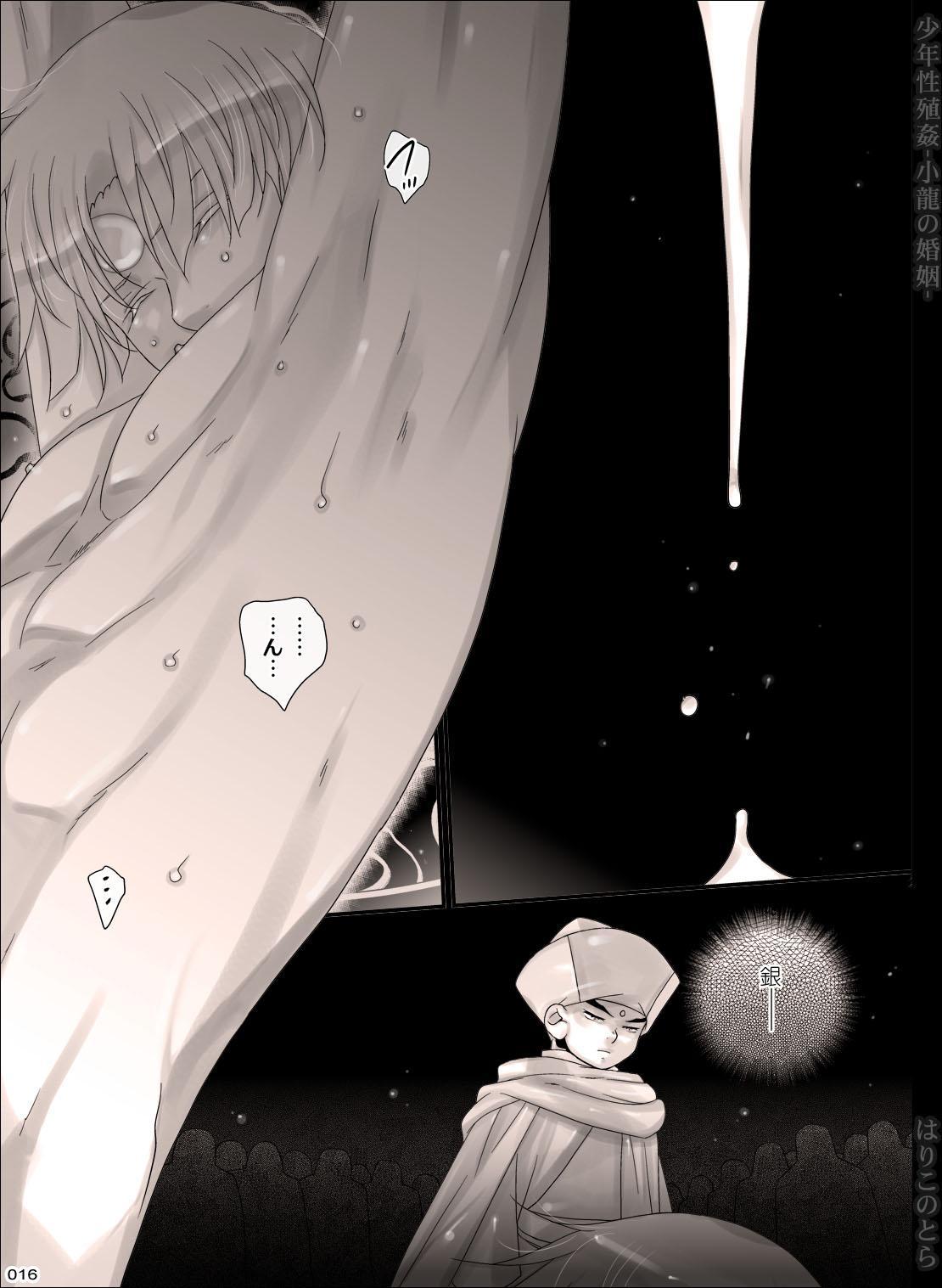Shounen Seishokukan - Shouryuu no Konin 15