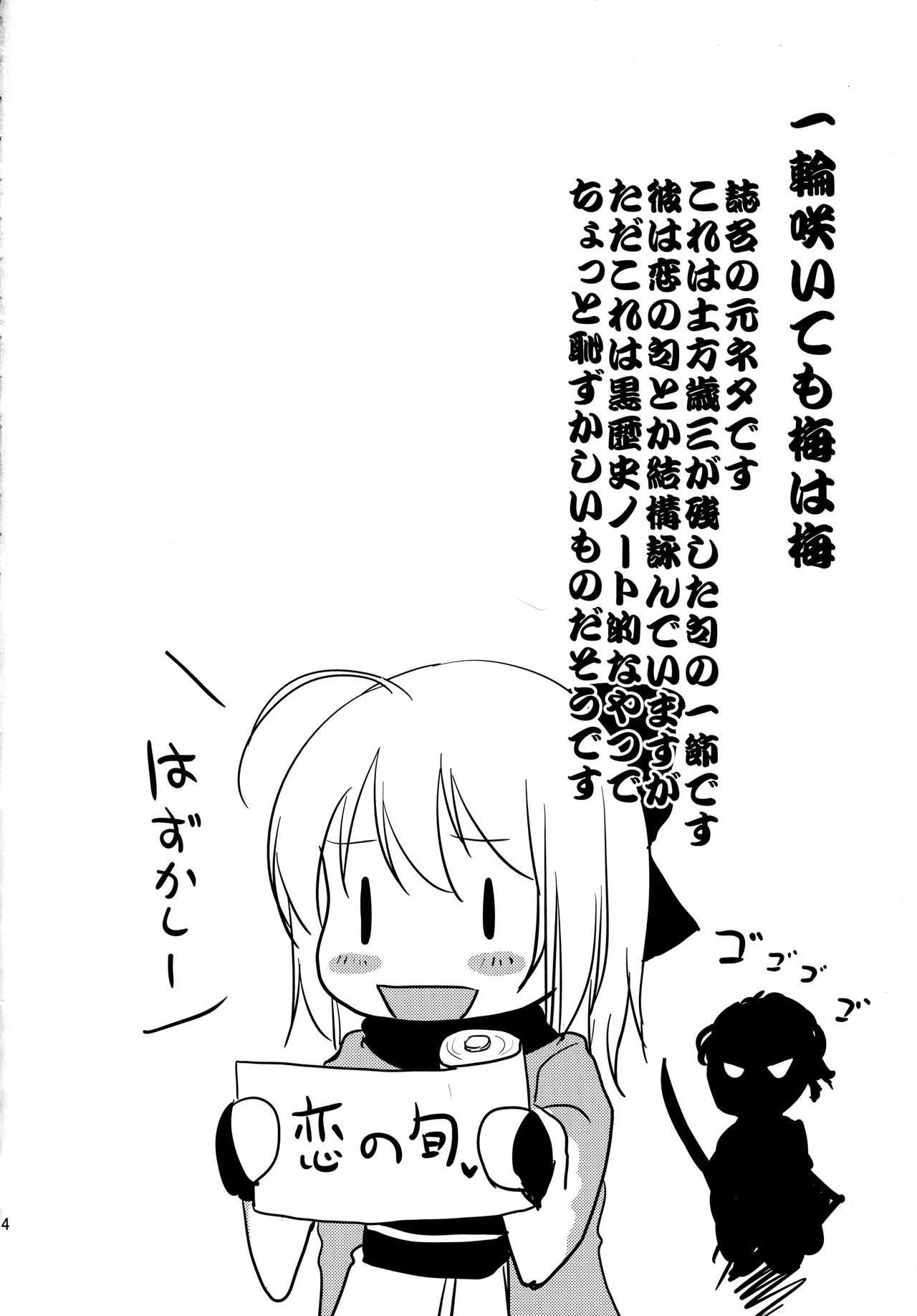 Ichirin Saite mo Sakura wa Sakura 2