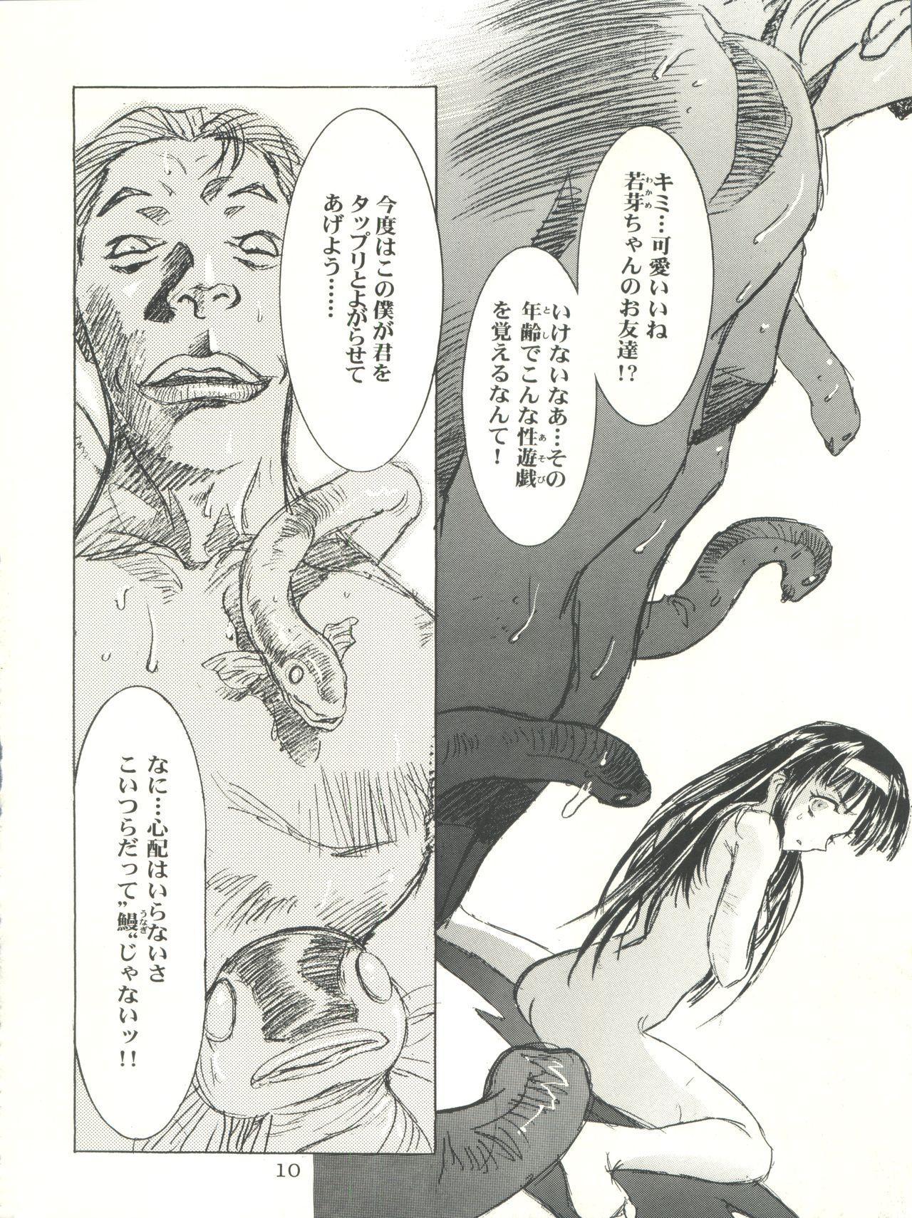 Sakura-Ame CROQUIS 9