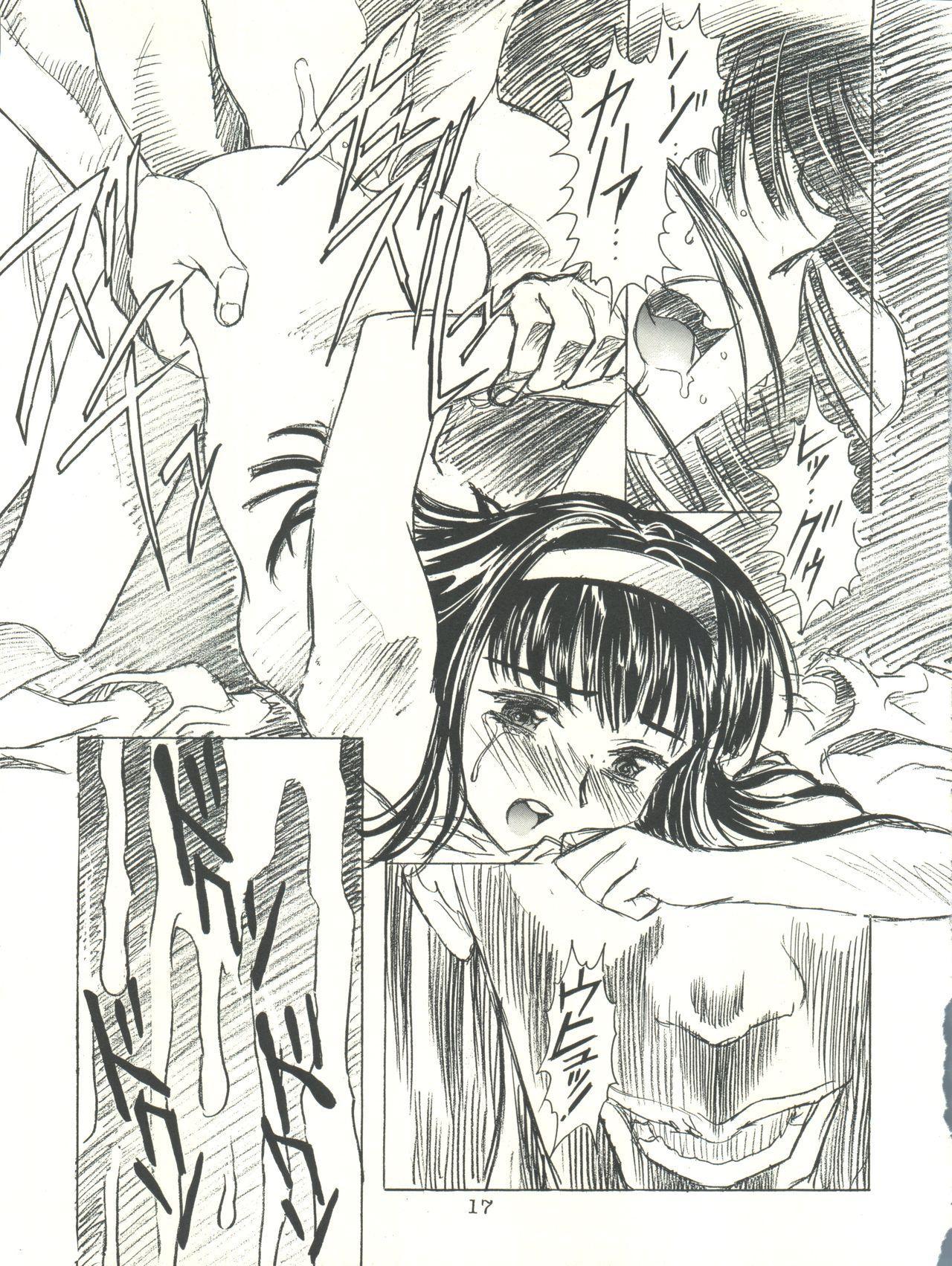 Sakura-Ame CROQUIS 16