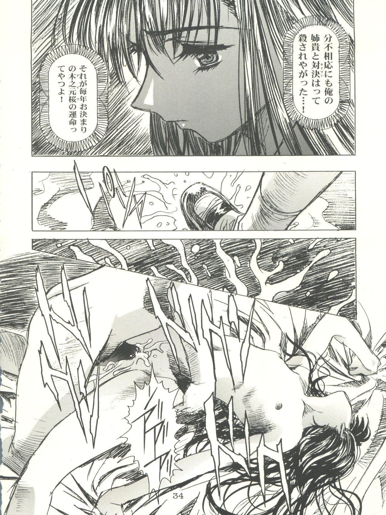 Sakura-Ame CROQUIS 33