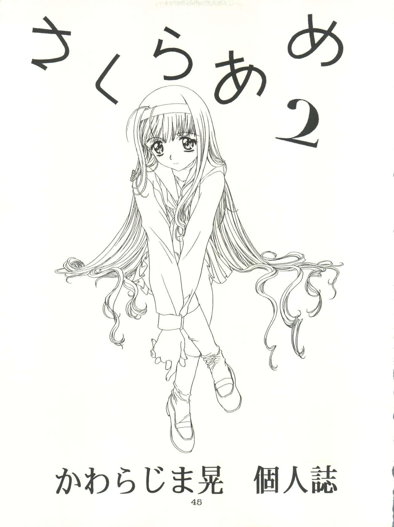 Sakura-Ame CROQUIS 44