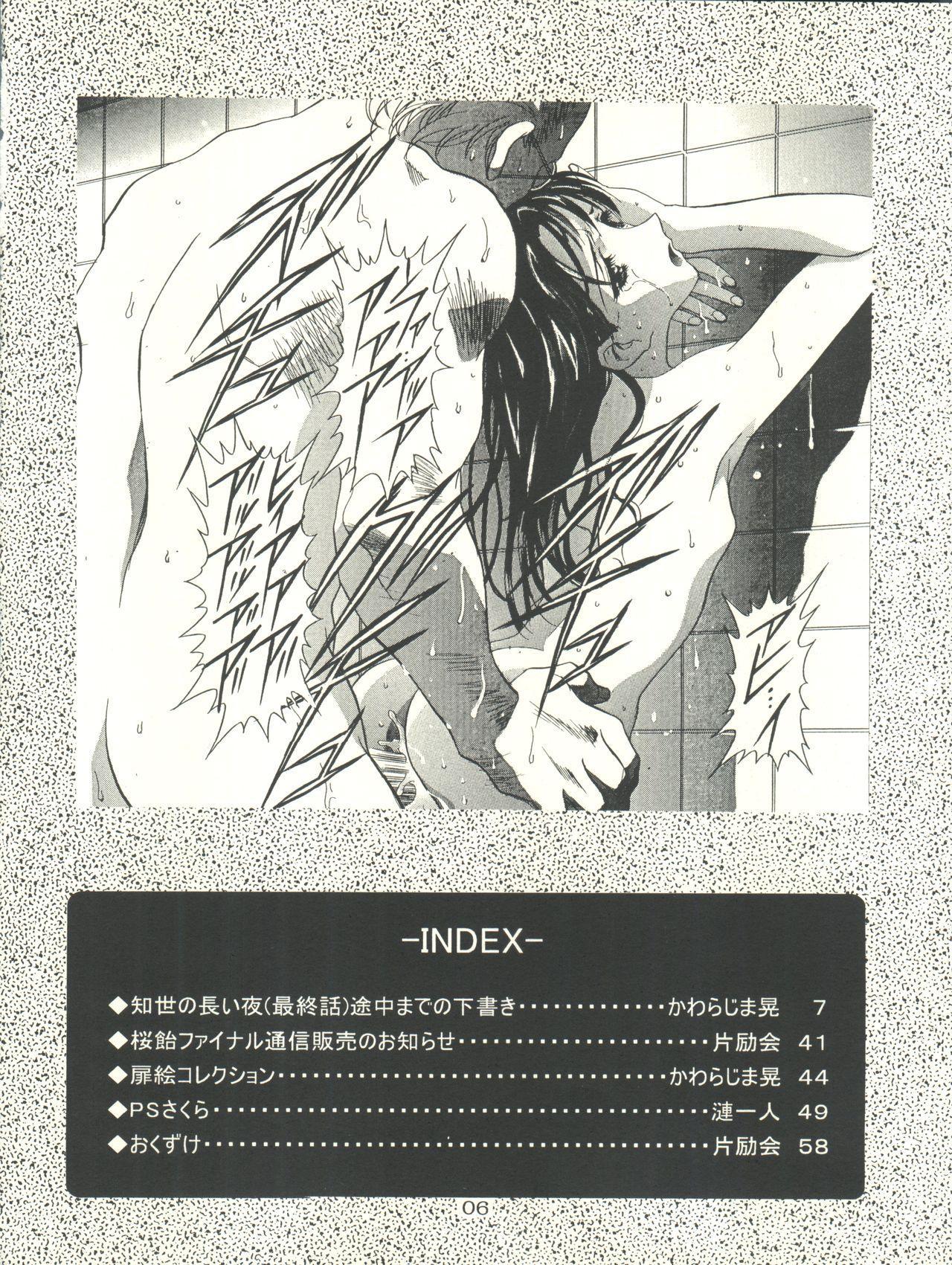 Sakura-Ame CROQUIS 5