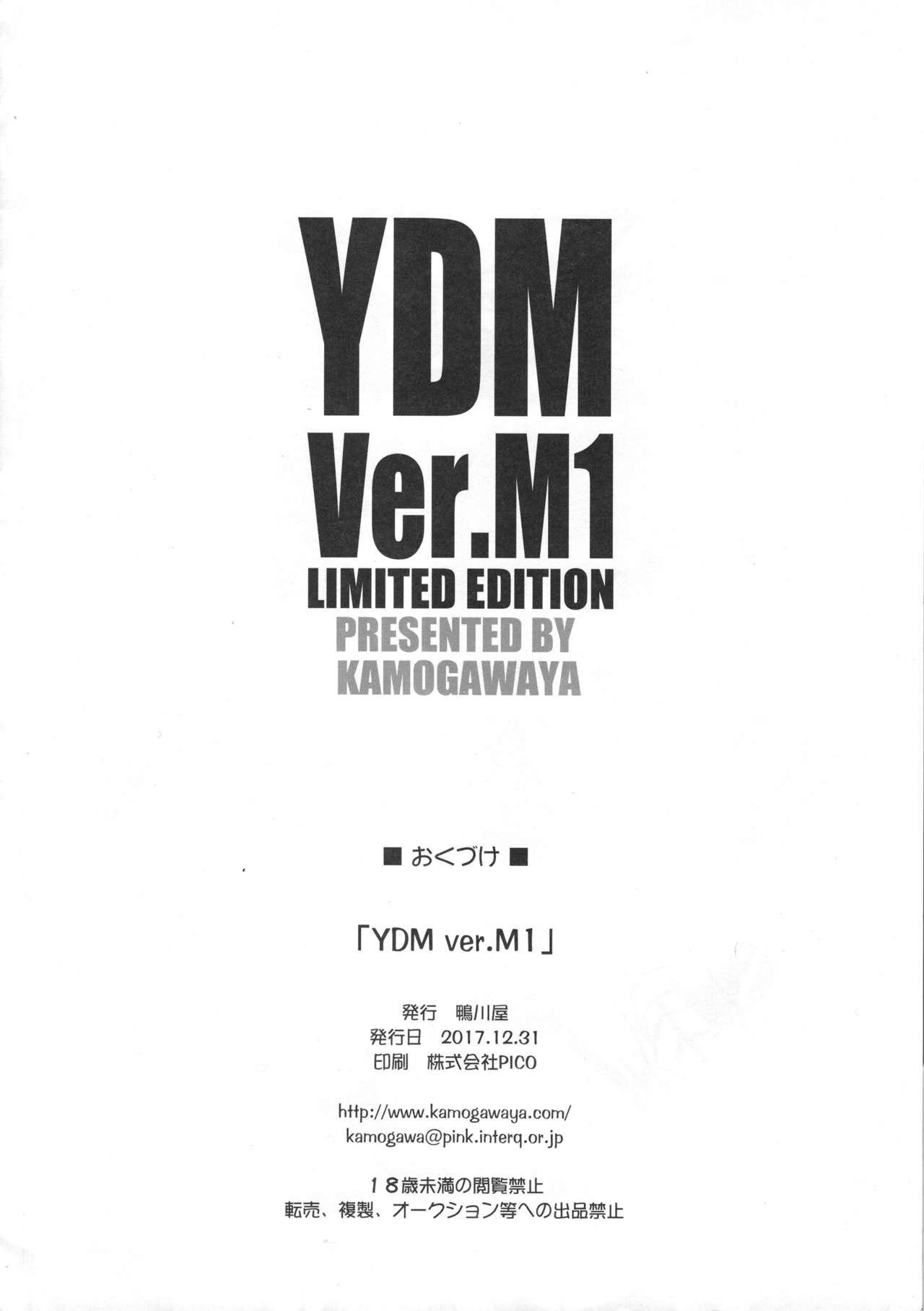 YDM ver.M1 11