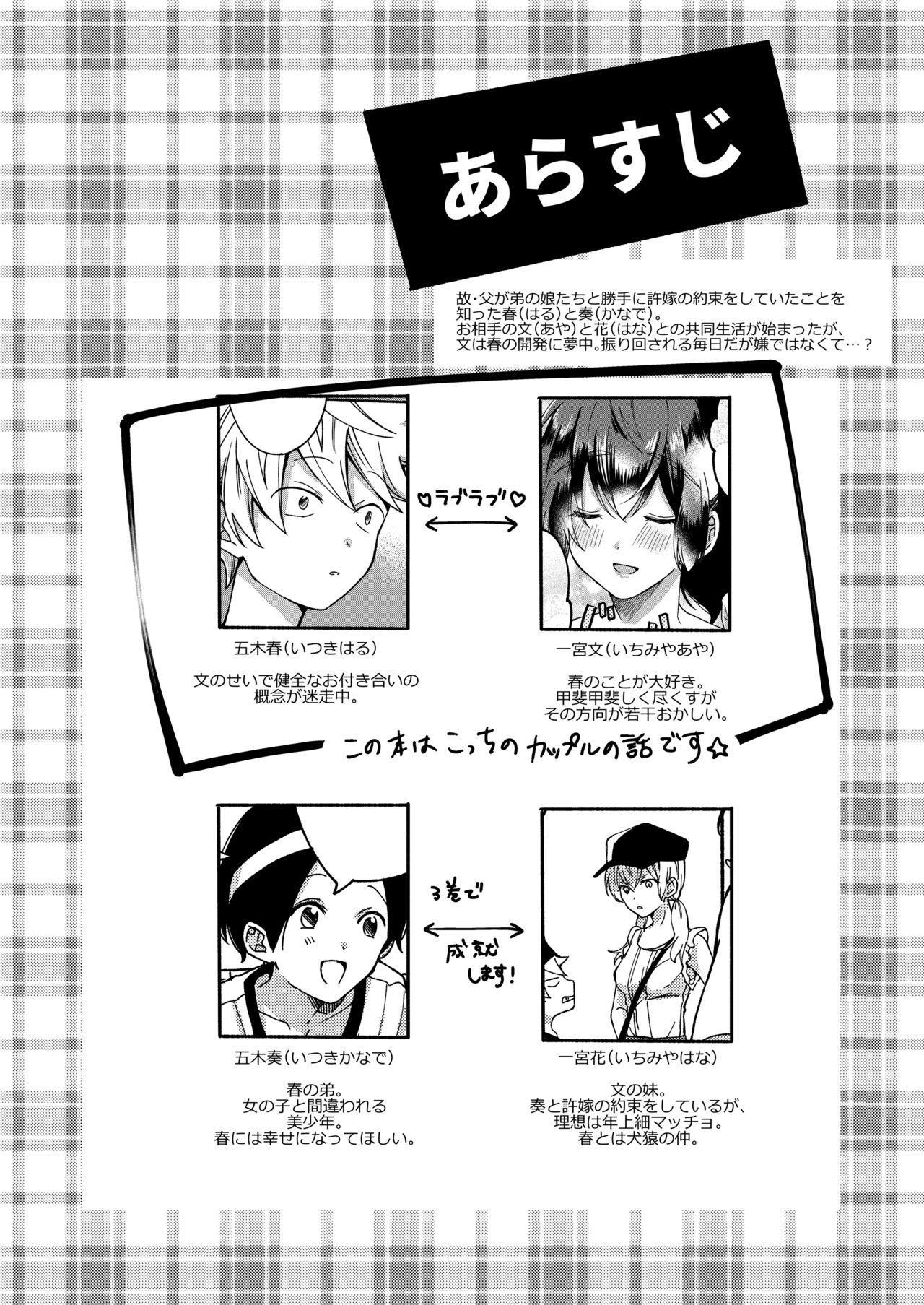 Onee-chan to Boku no Kaihatsu Seikatsu 2 2
