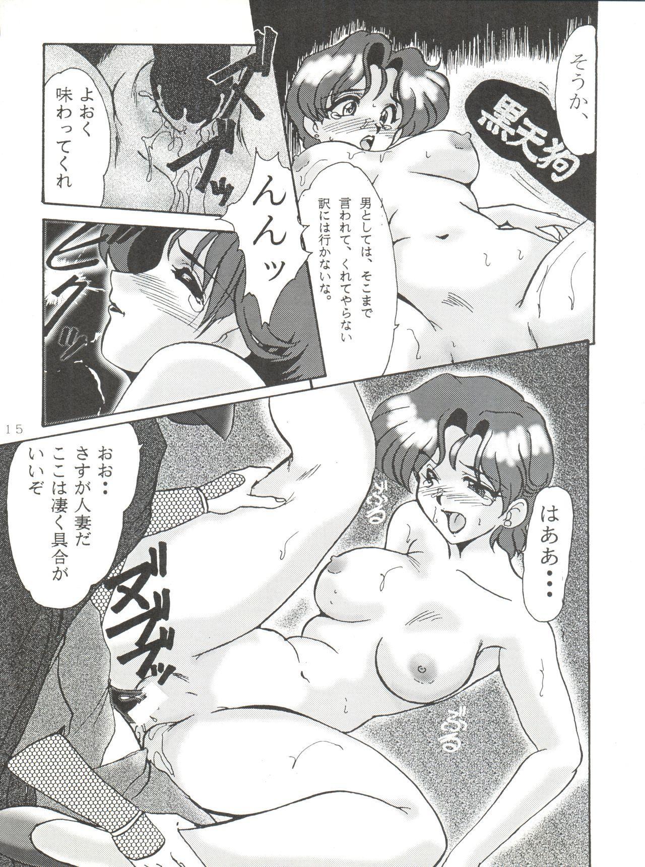 Tokusatsu Shinsengumi 14