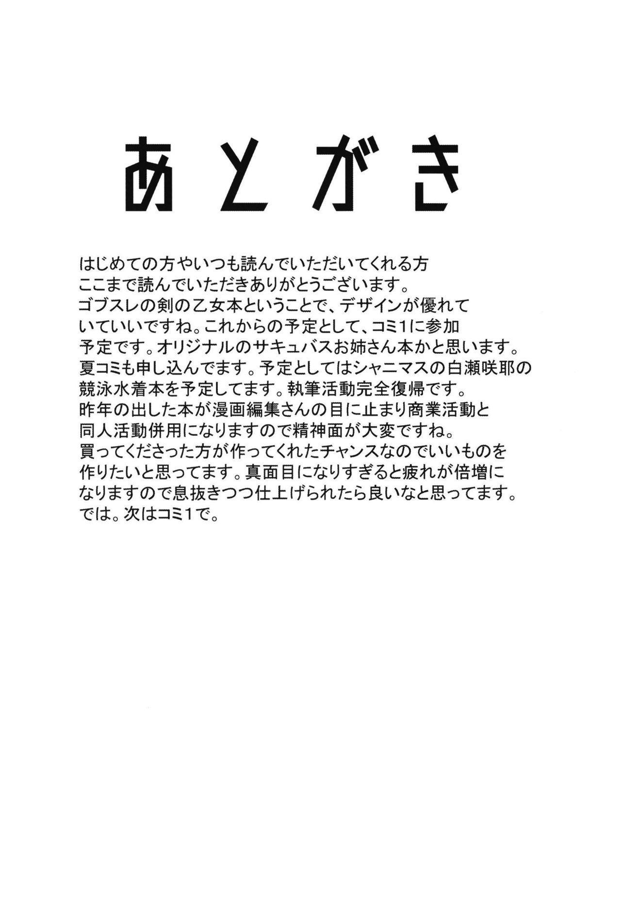 Dare mo Shiranai Tsurugi no Otome no Seiseikatsu 24