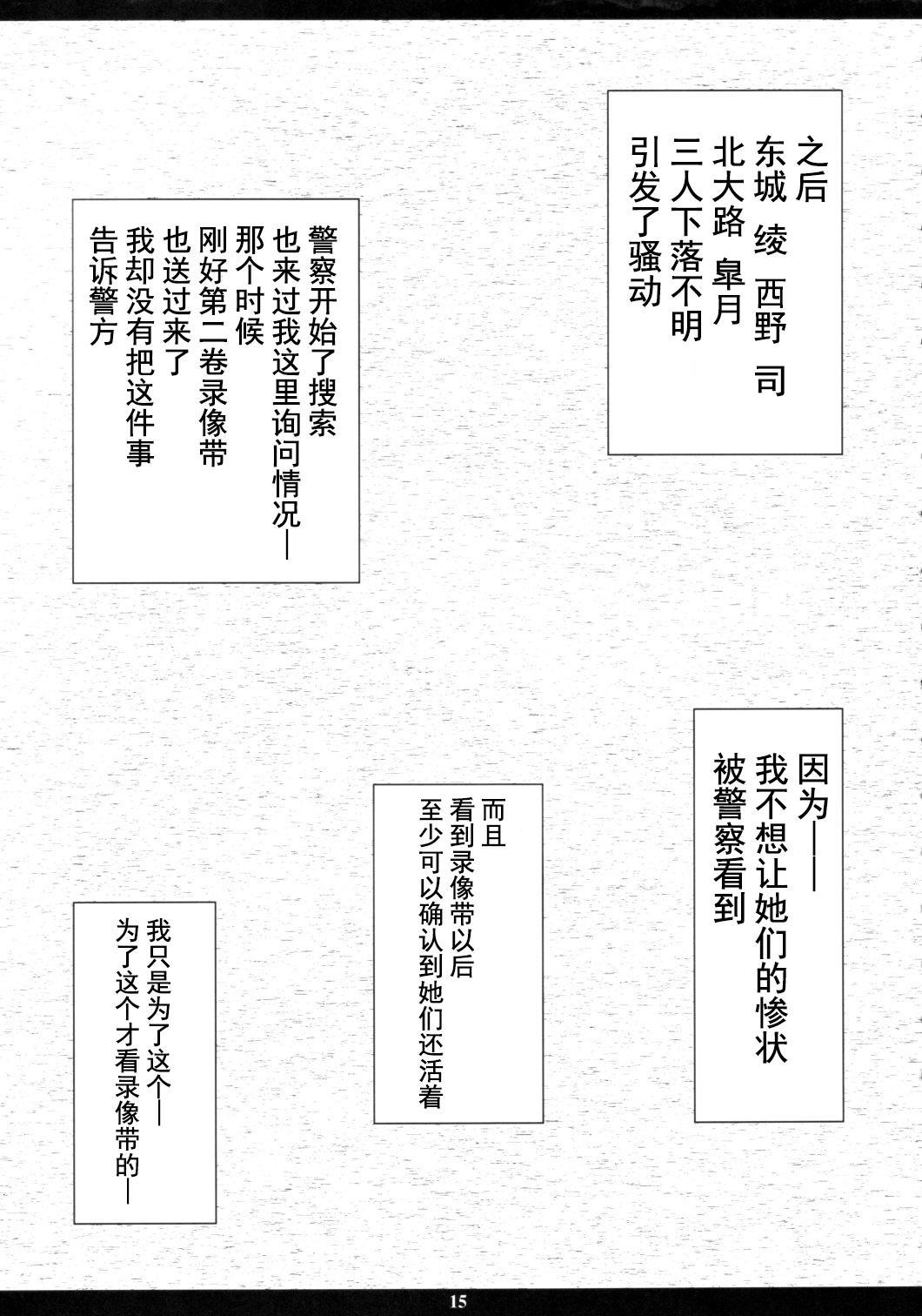 Ichigo MAX% 13