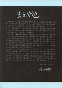 Nijuuyon no Hitomi Gekan 4