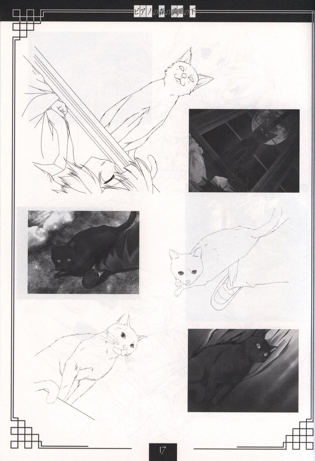 Piano no Mori no Mankai no Shita illustration art book 15